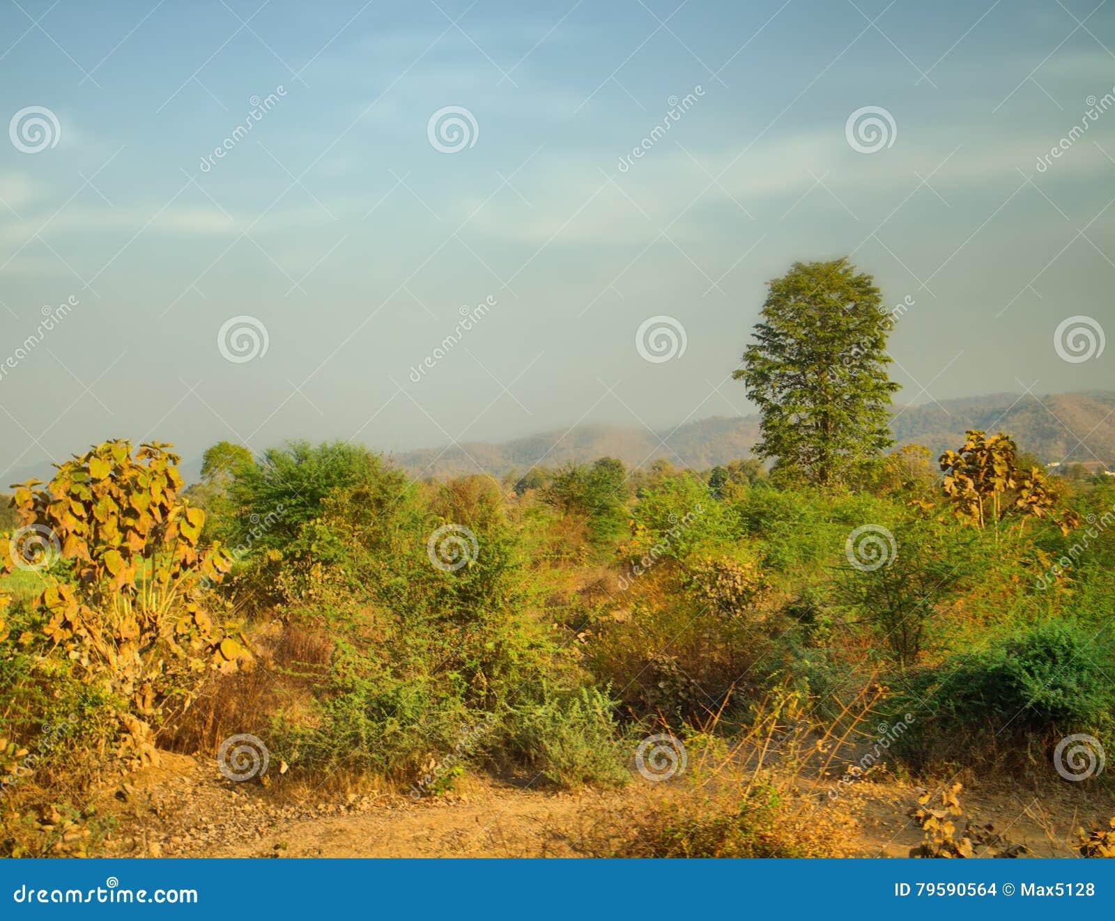 在入口的青山对高原德干,印度