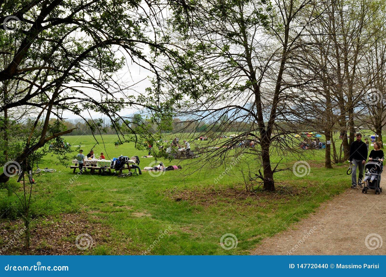 在公园的野餐
