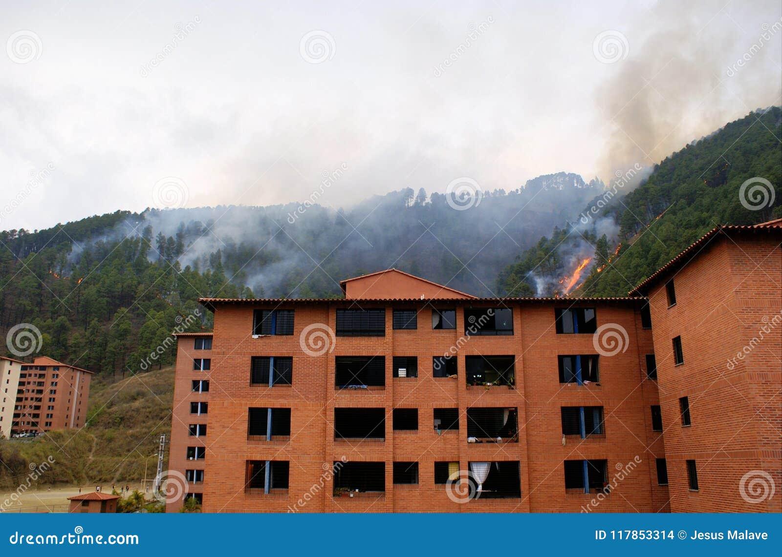在公寓住宅区后的火