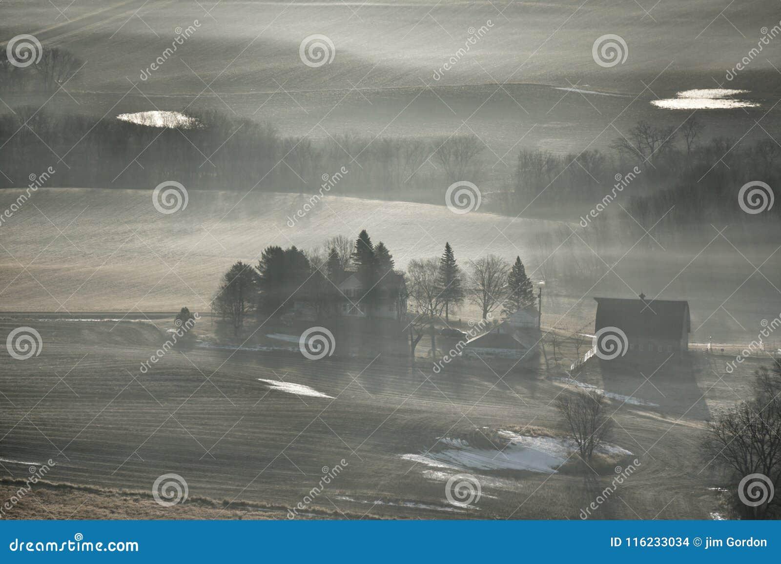 在农场的雾