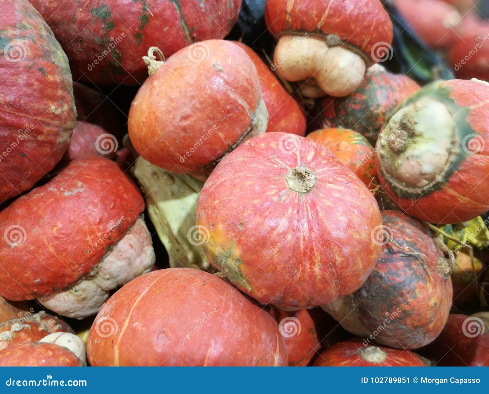 在农夫市场上的许多南瓜