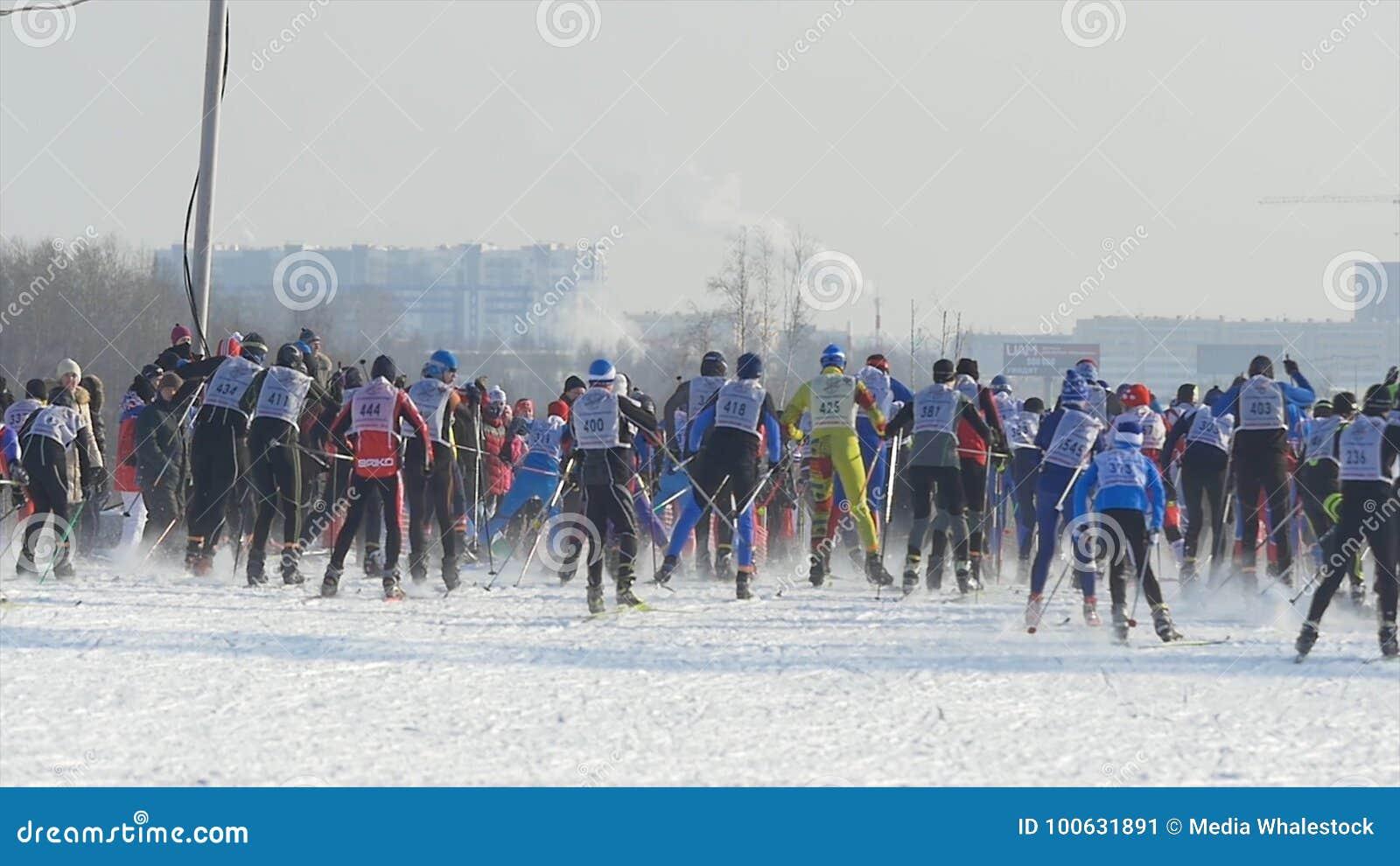 在冠军期间的许多起动人运动员滑雪者在越野滑雪