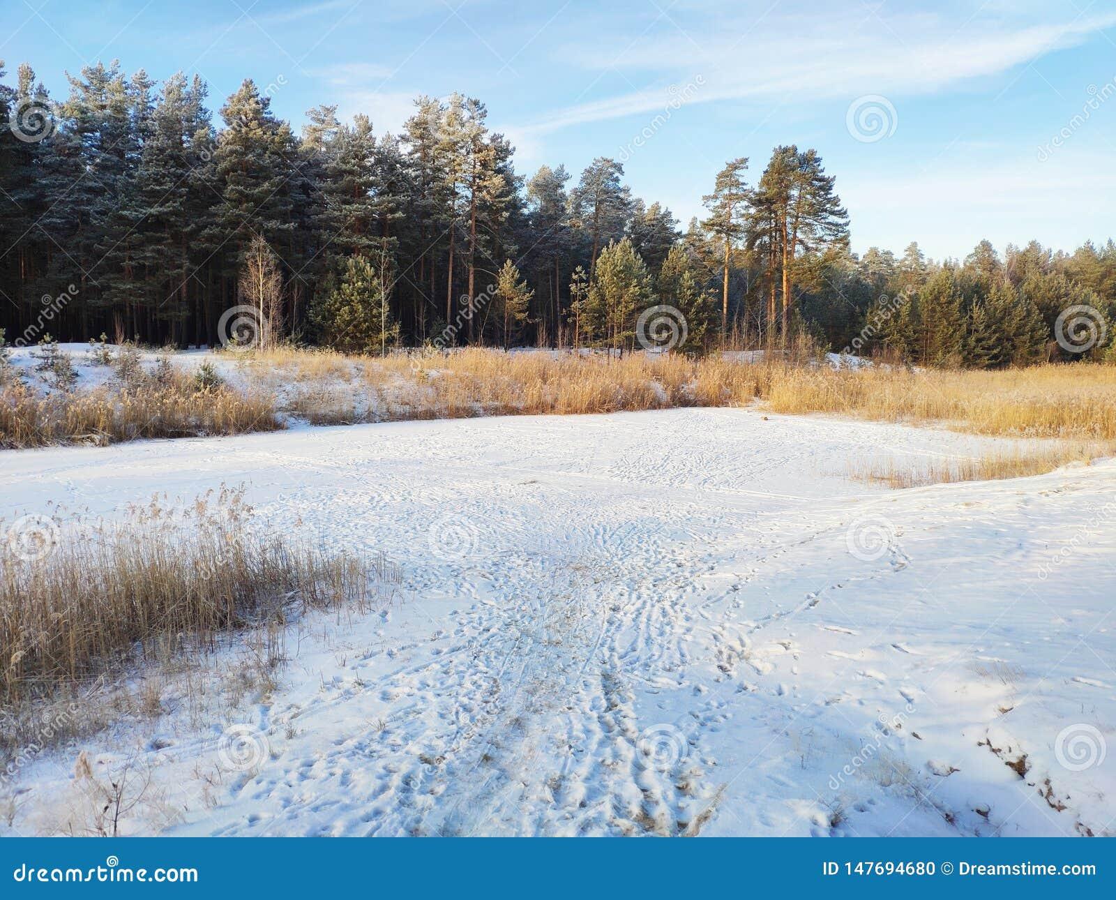 在冰下层数的Winter湖