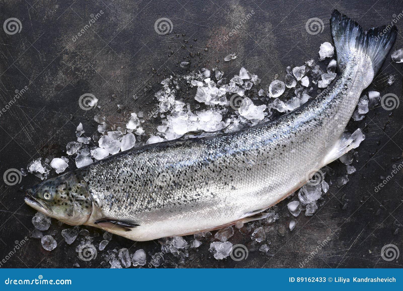 在冰的未加工的新鲜的有机三文鱼 与空间的顶视图文本的