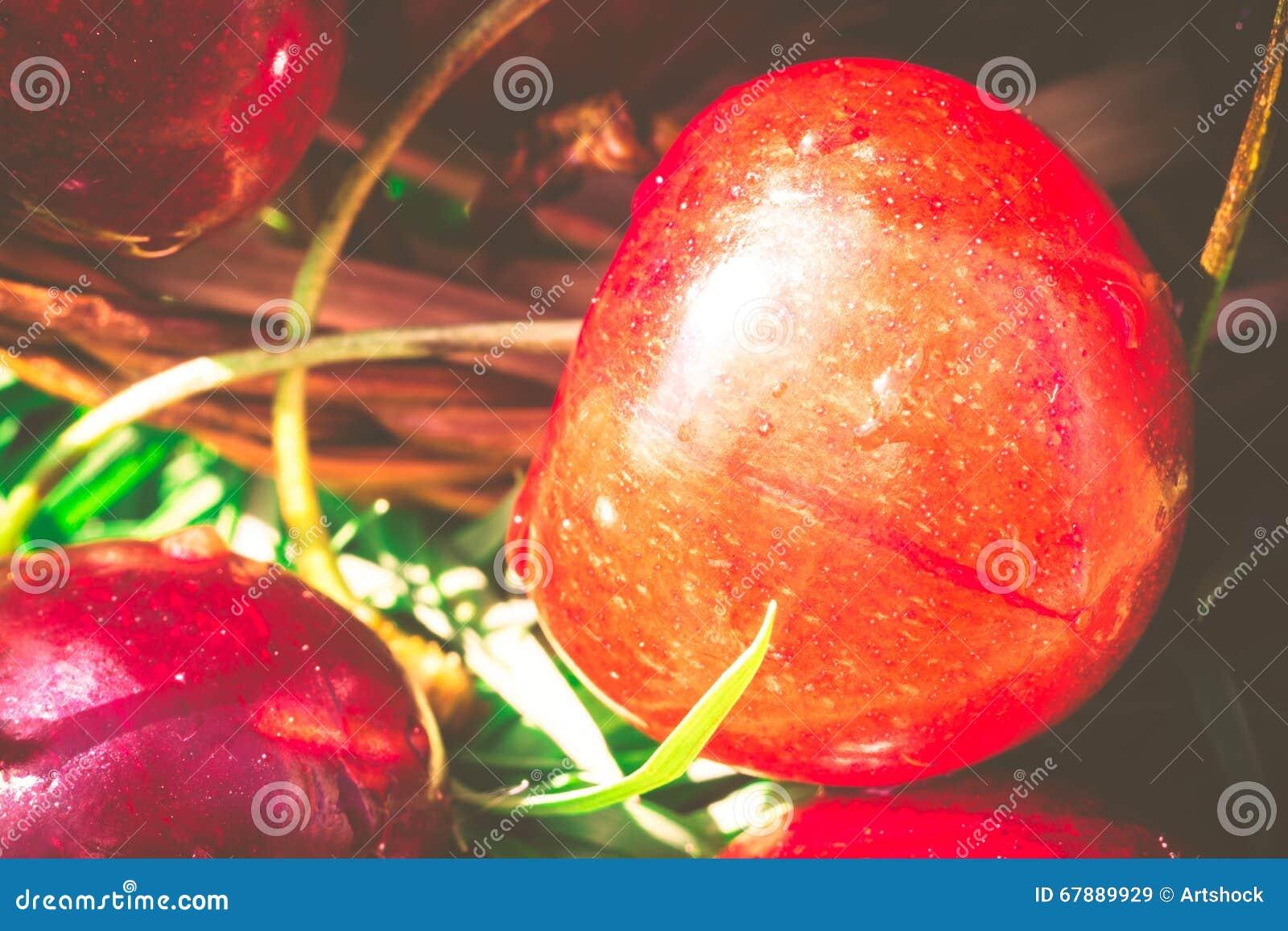 在减速火箭的草的红色樱桃