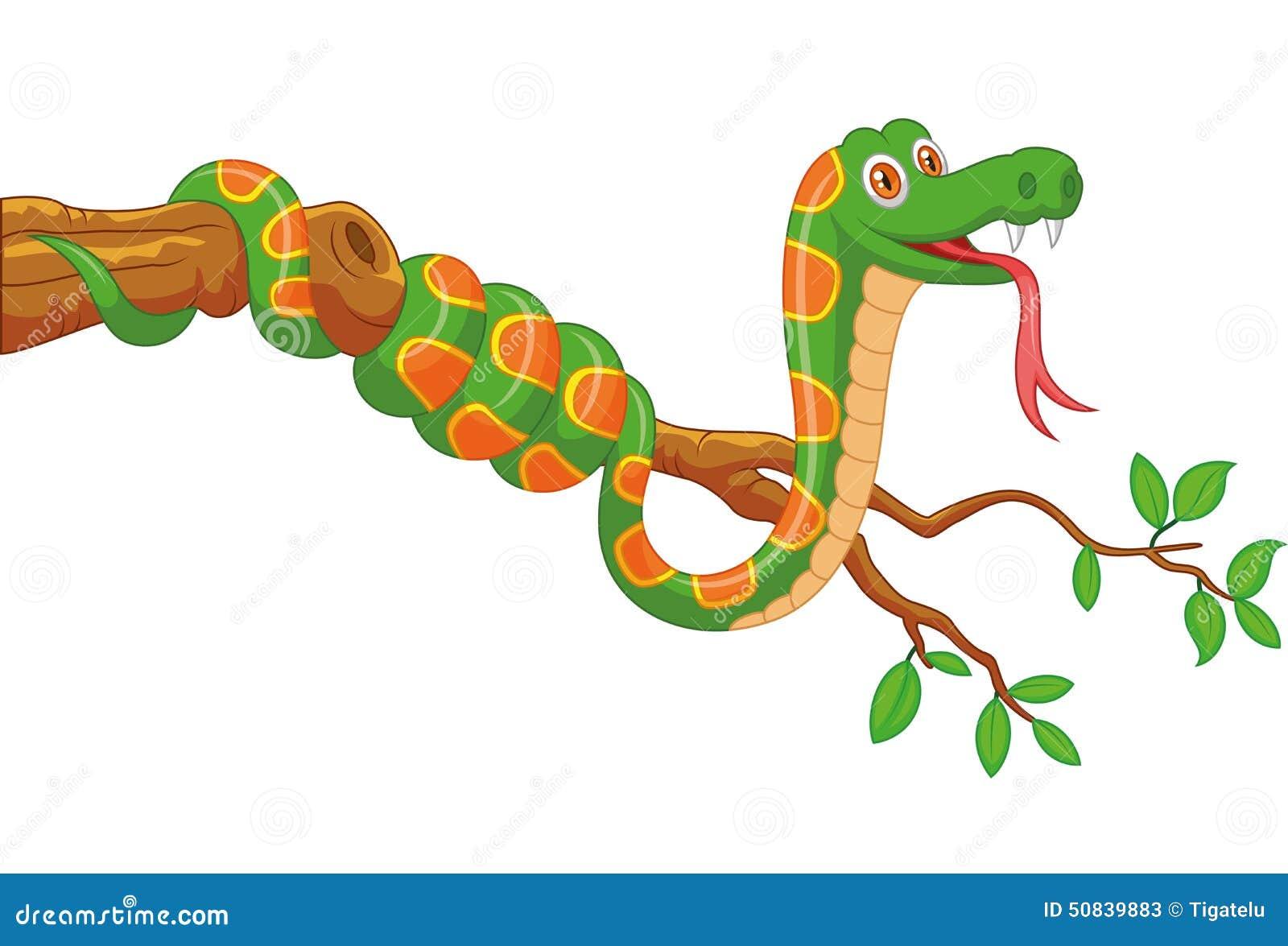 Green snake cartoon royalty free stock image image 19462406 -