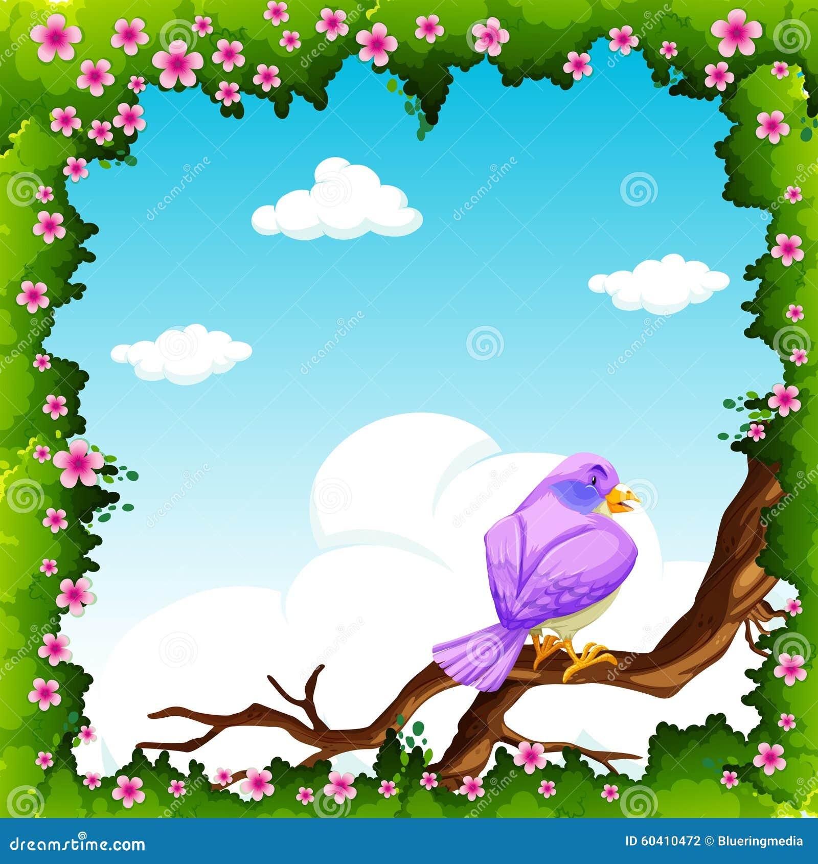 在分支的紫色鸟