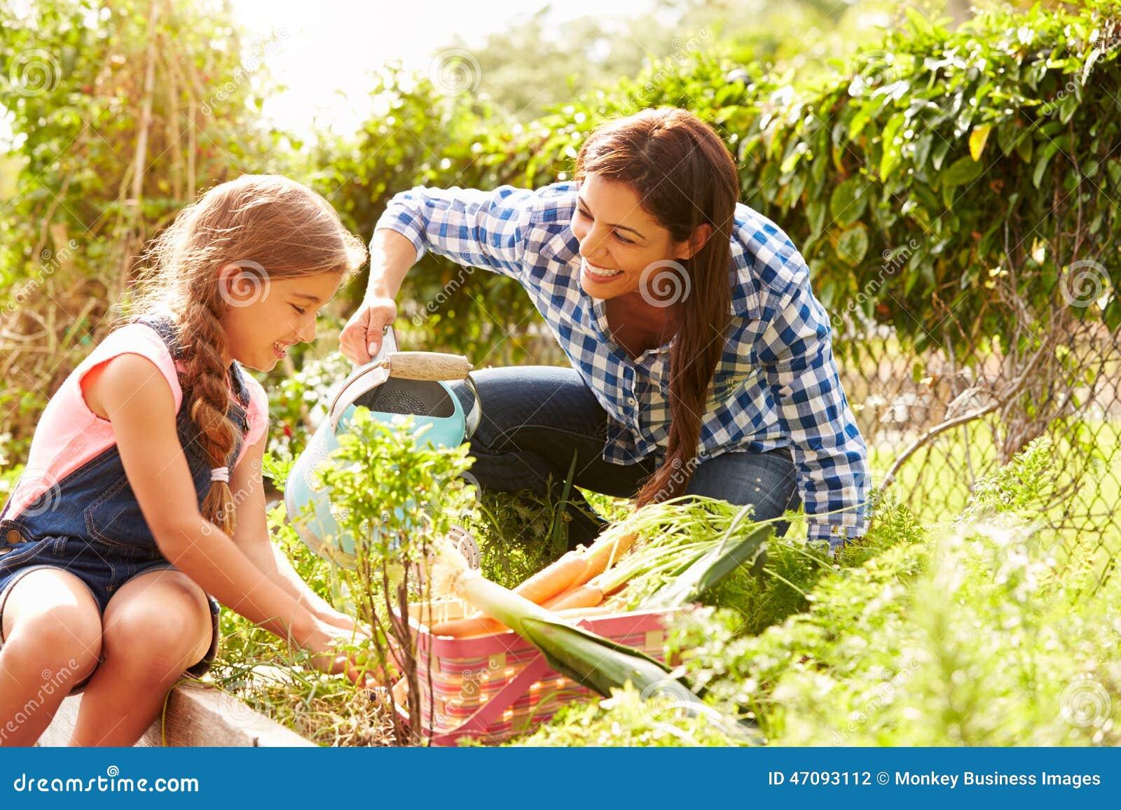 在分配地段的母亲和女儿