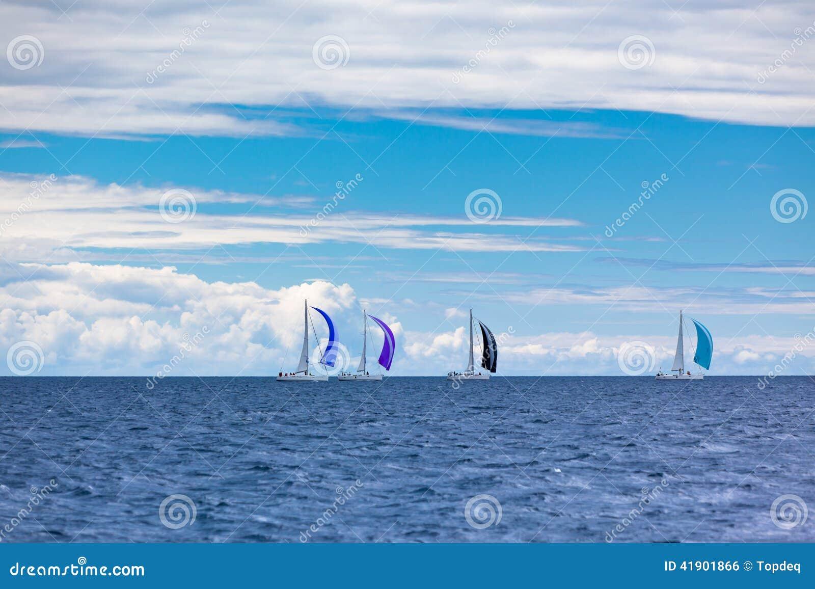 在刮风的天气的亚得里亚海乘快艇赛船会