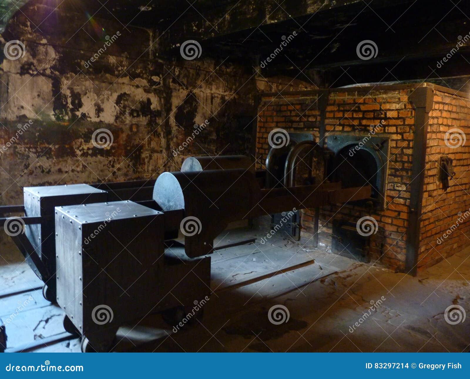 在前集中营的熔炉含量 auschwitz birkenau