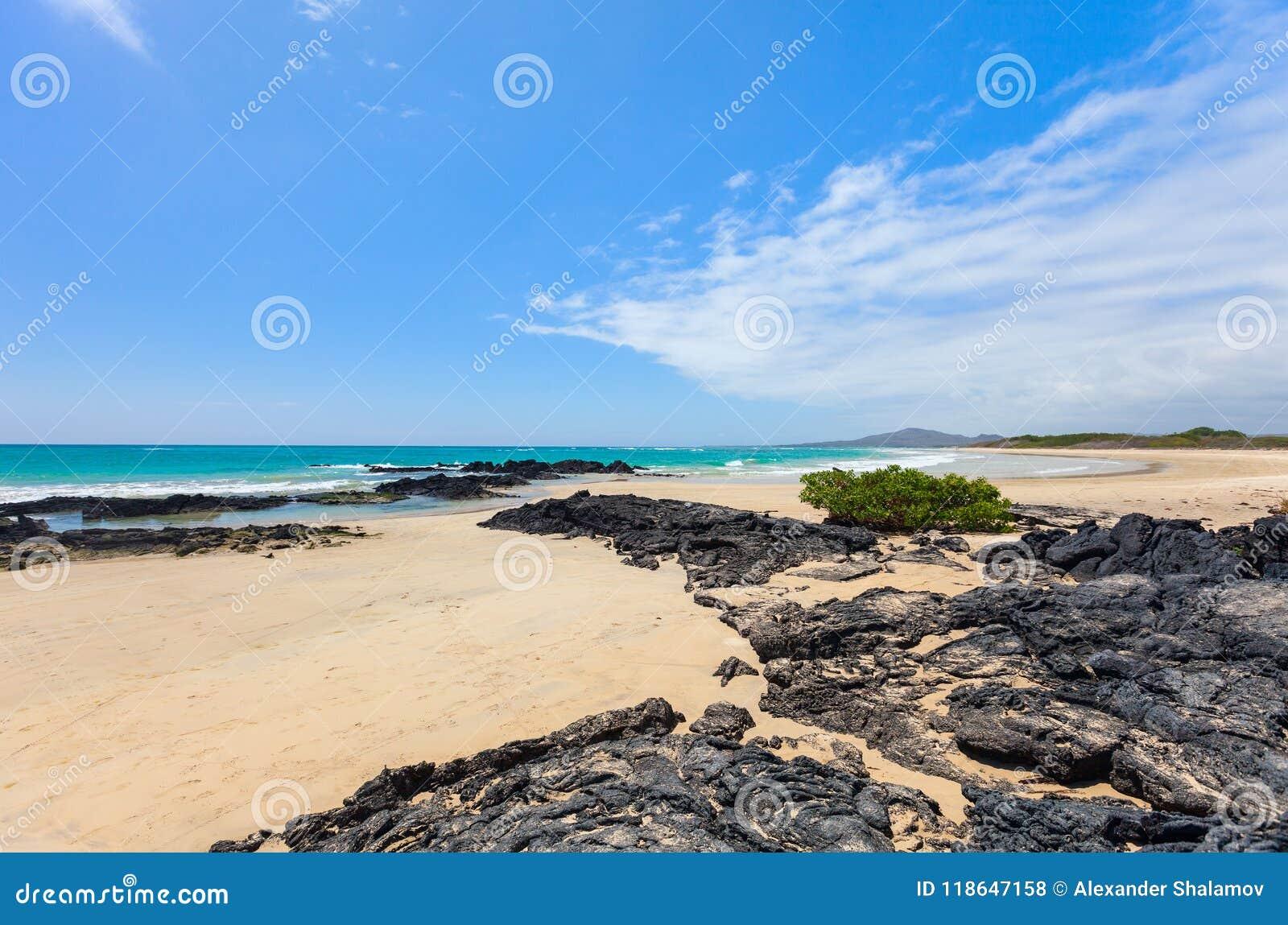 在加拉帕戈斯伊莎贝拉岛海岛,厄瓜多尔的海滩