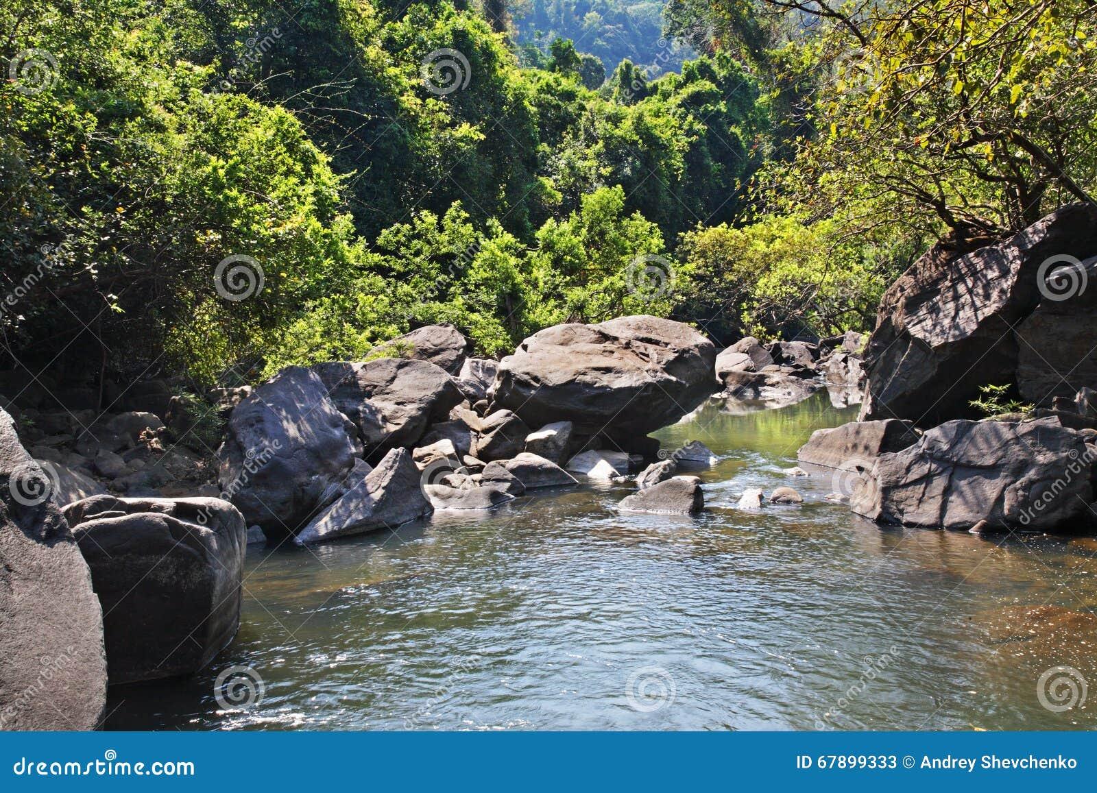 在卡纳塔克邦状态的小河 印度