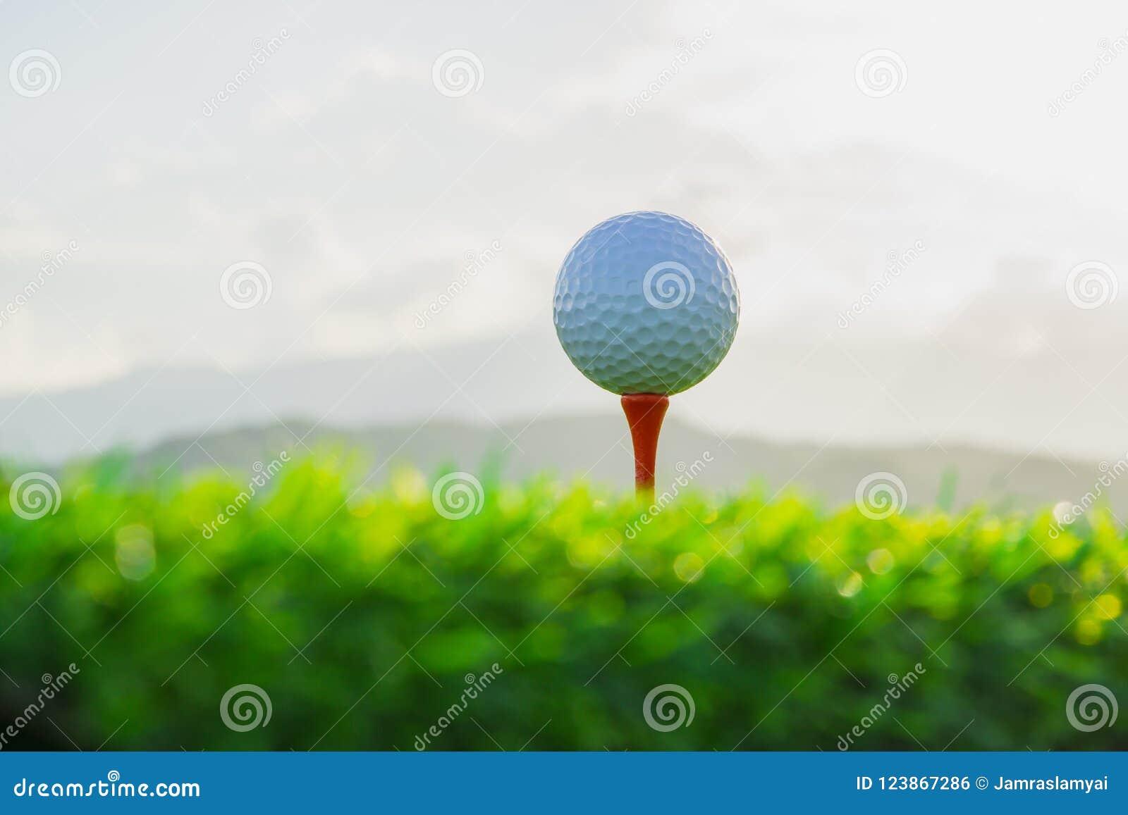 在发球区域的高尔夫球在自然背景中固定准备好使用