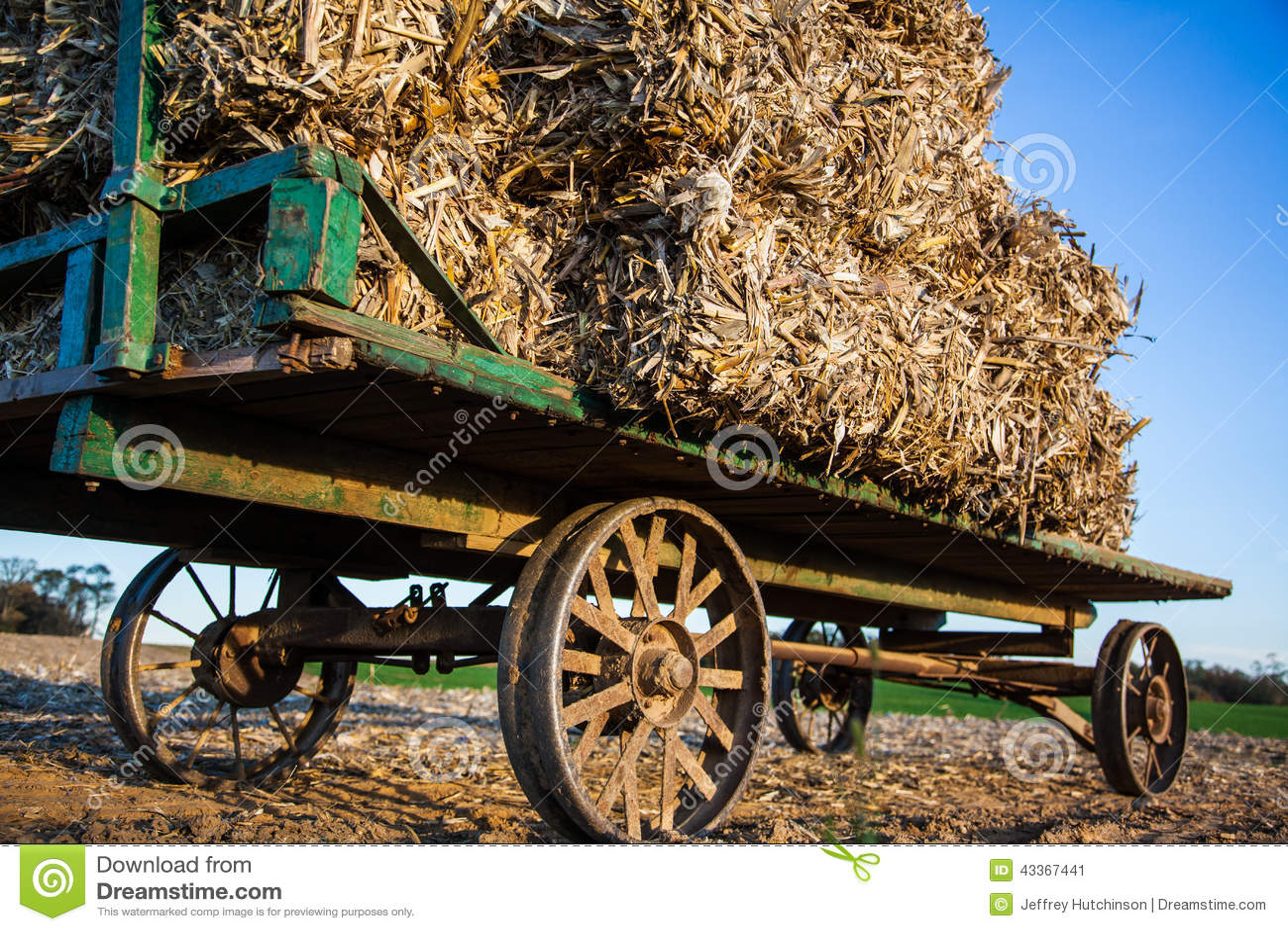 在古色古香的门诺派中的严紧派的无盖货车的被堆积的干草捆