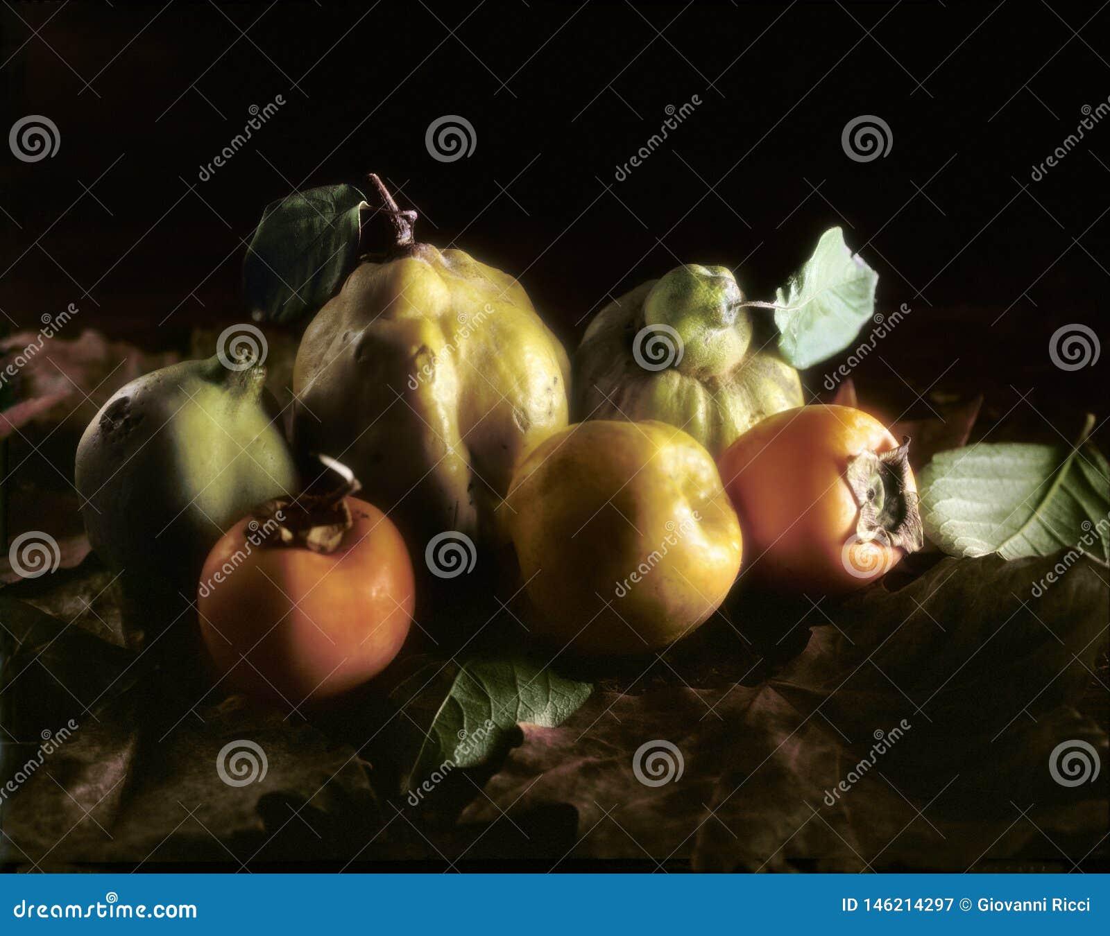 在叶子的秋季果子