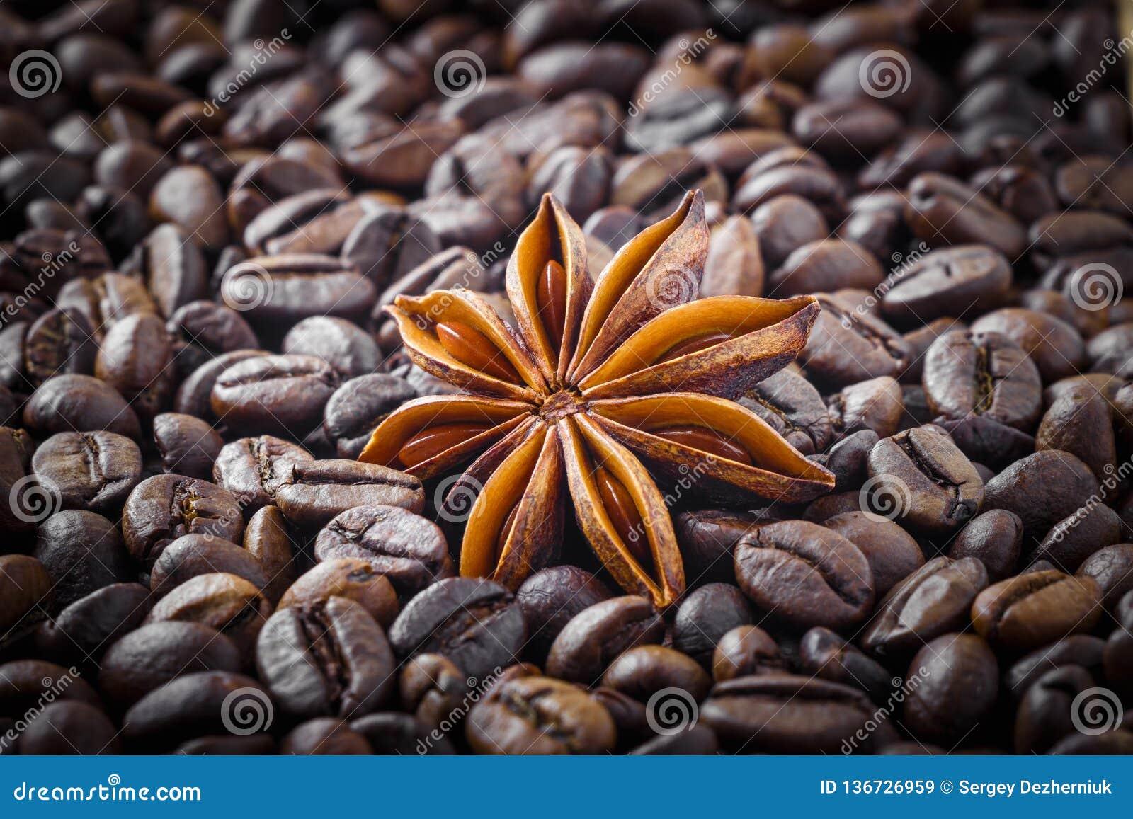 在咖啡豆背景的八角