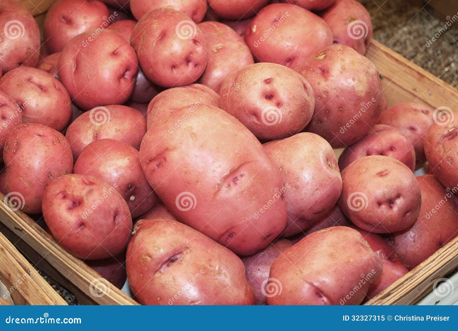 在商店的红色土豆 免版税库存照片 - 图片: 32327315图片