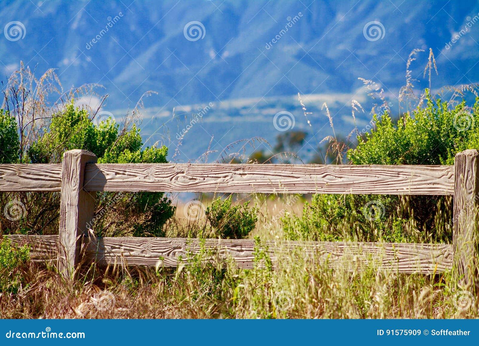 在圣塔内斯山当地草丛林前面的木篱芭