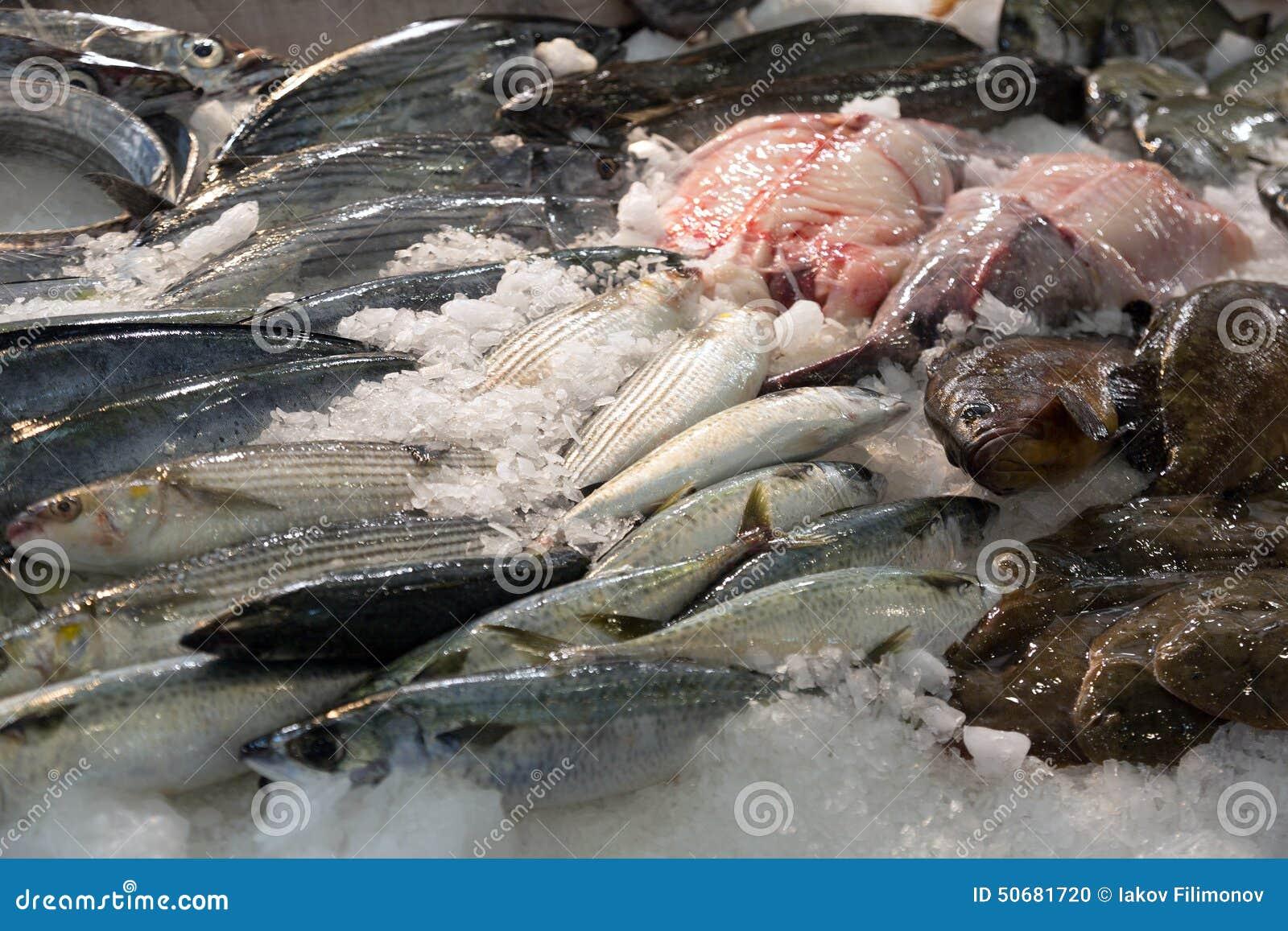 Download 在地中海市场柜台的鱼 库存照片. 图片 包括有 海洋, 未煮过, 市场, 界面, 许多, 新鲜, 销售额 - 50681720