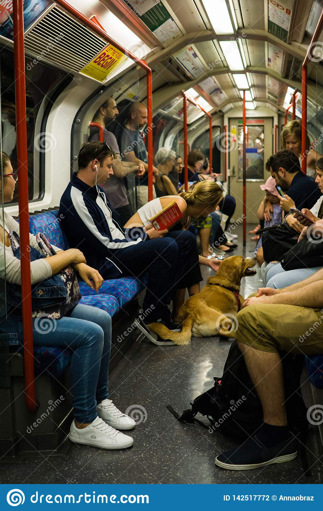 在地板上的狗在地铁,2018年6月3日,在伦敦