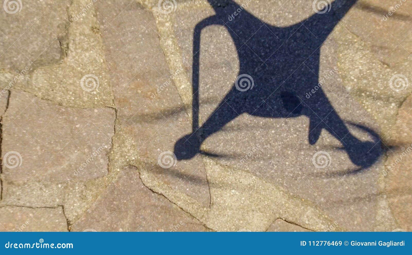 在地面上的寄生虫阴影,顶上的鸟瞰图