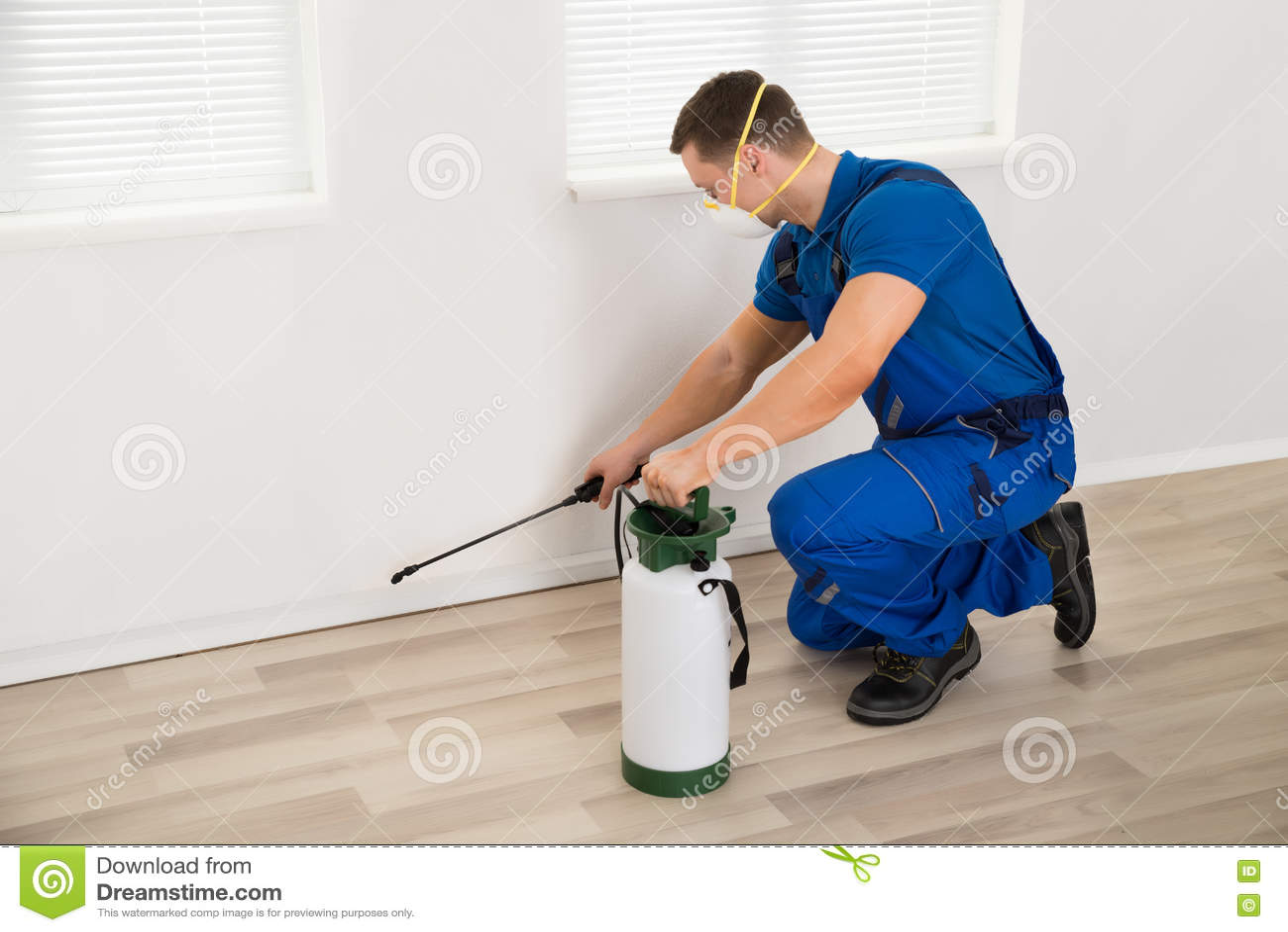 在墙壁上的工作者喷洒的杀虫剂在家