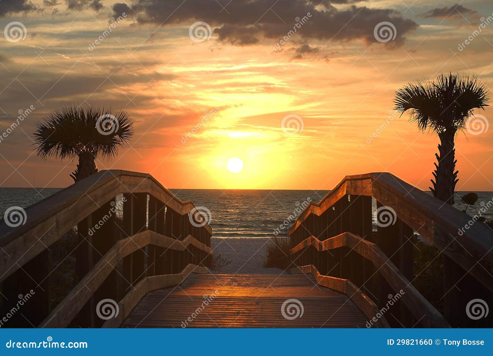 在墨西哥湾的美好的日落