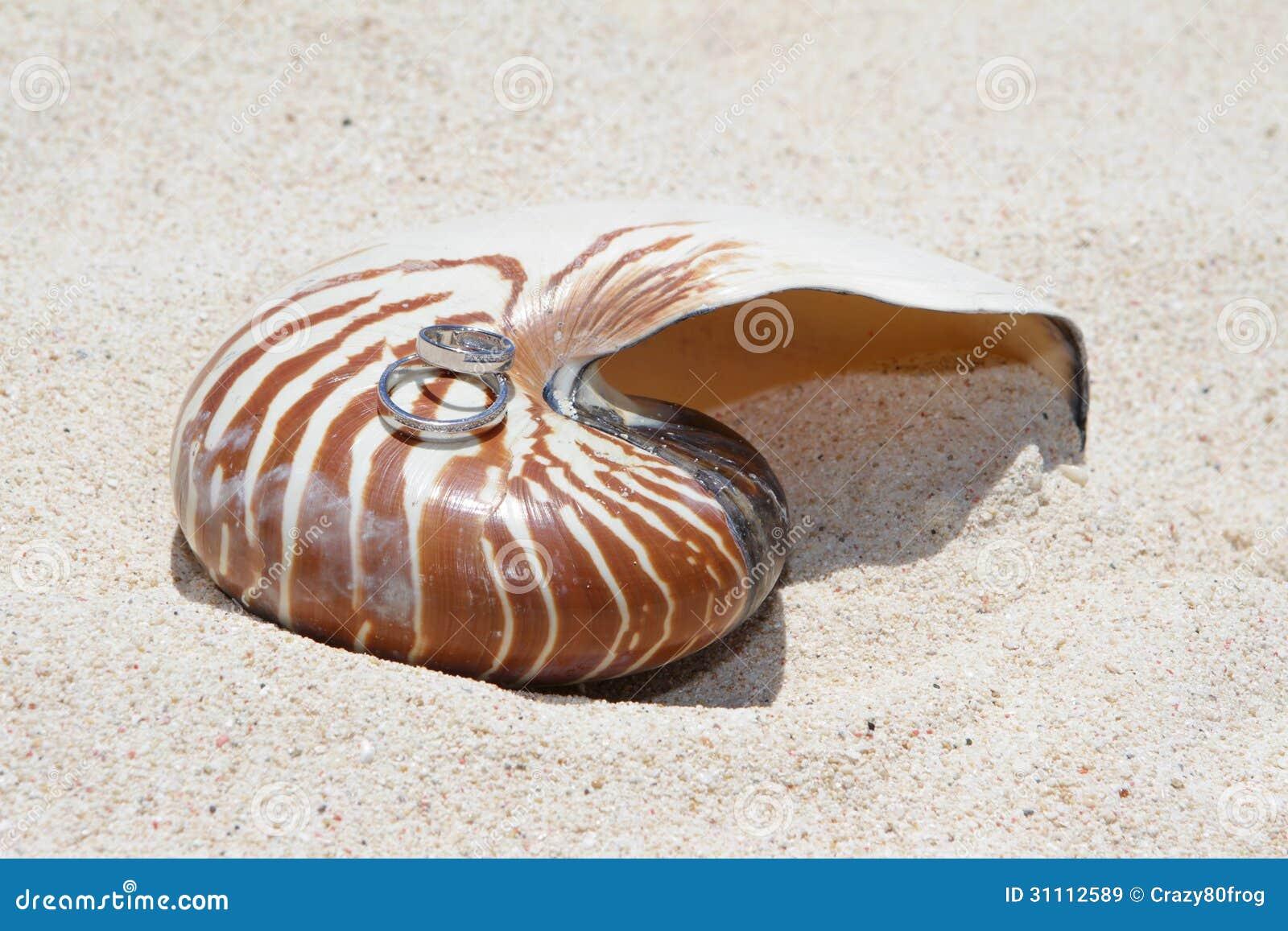 在壳的婚戒在海滩