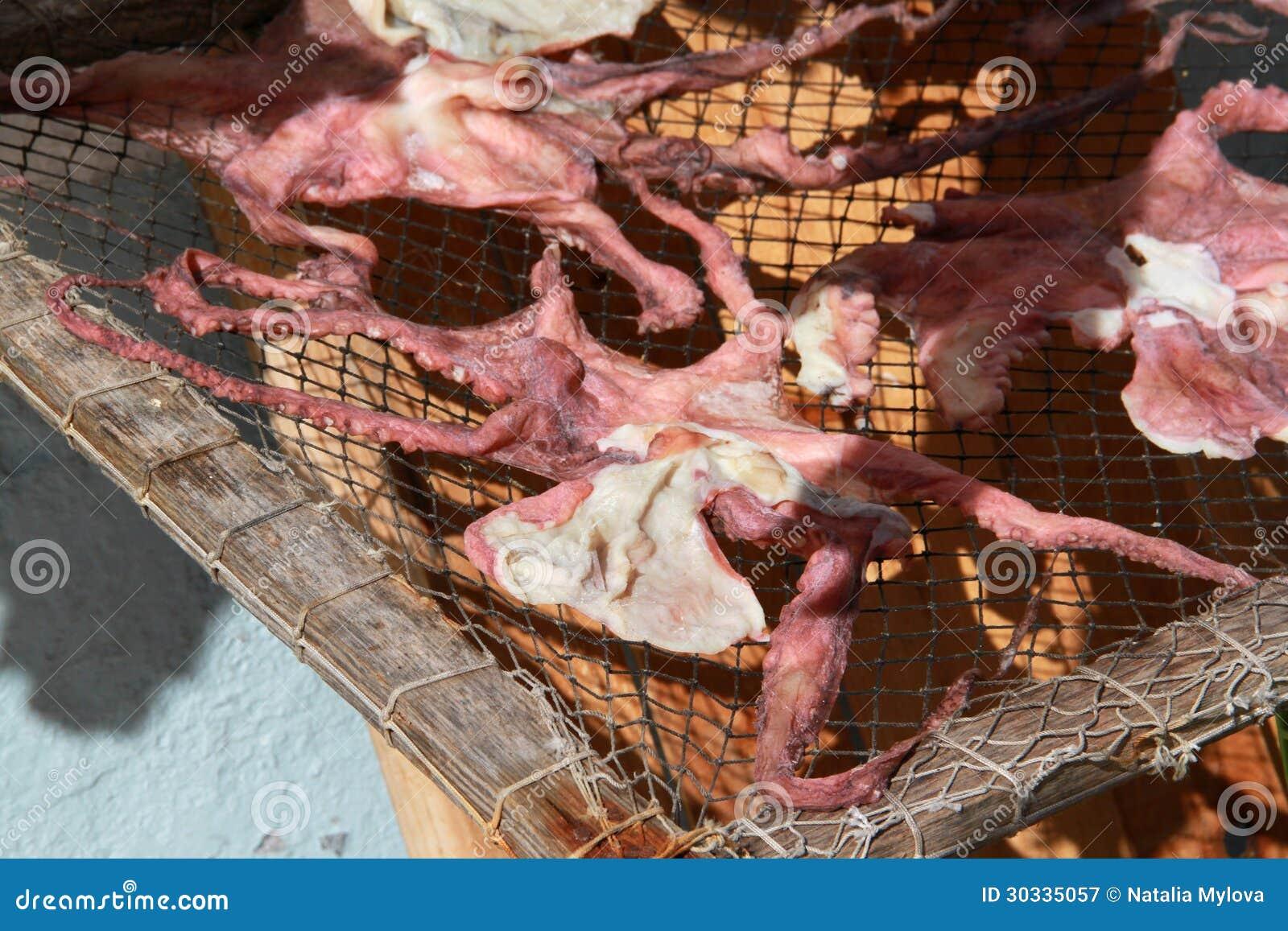 在太阳的干章鱼