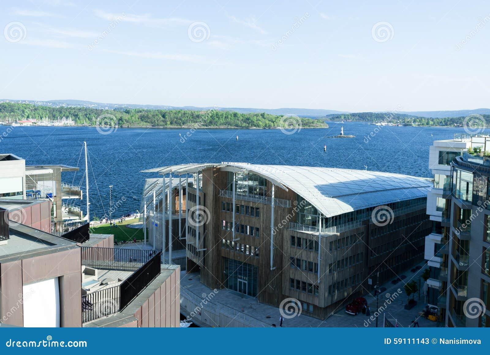 在奥斯陆海湾的挪威宪法天视图