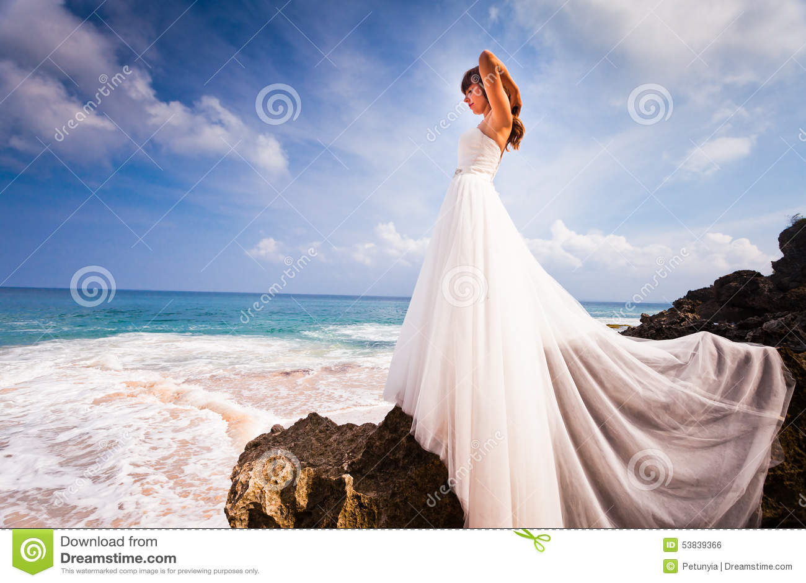 在婚礼礼服打扮的美丽的新娘