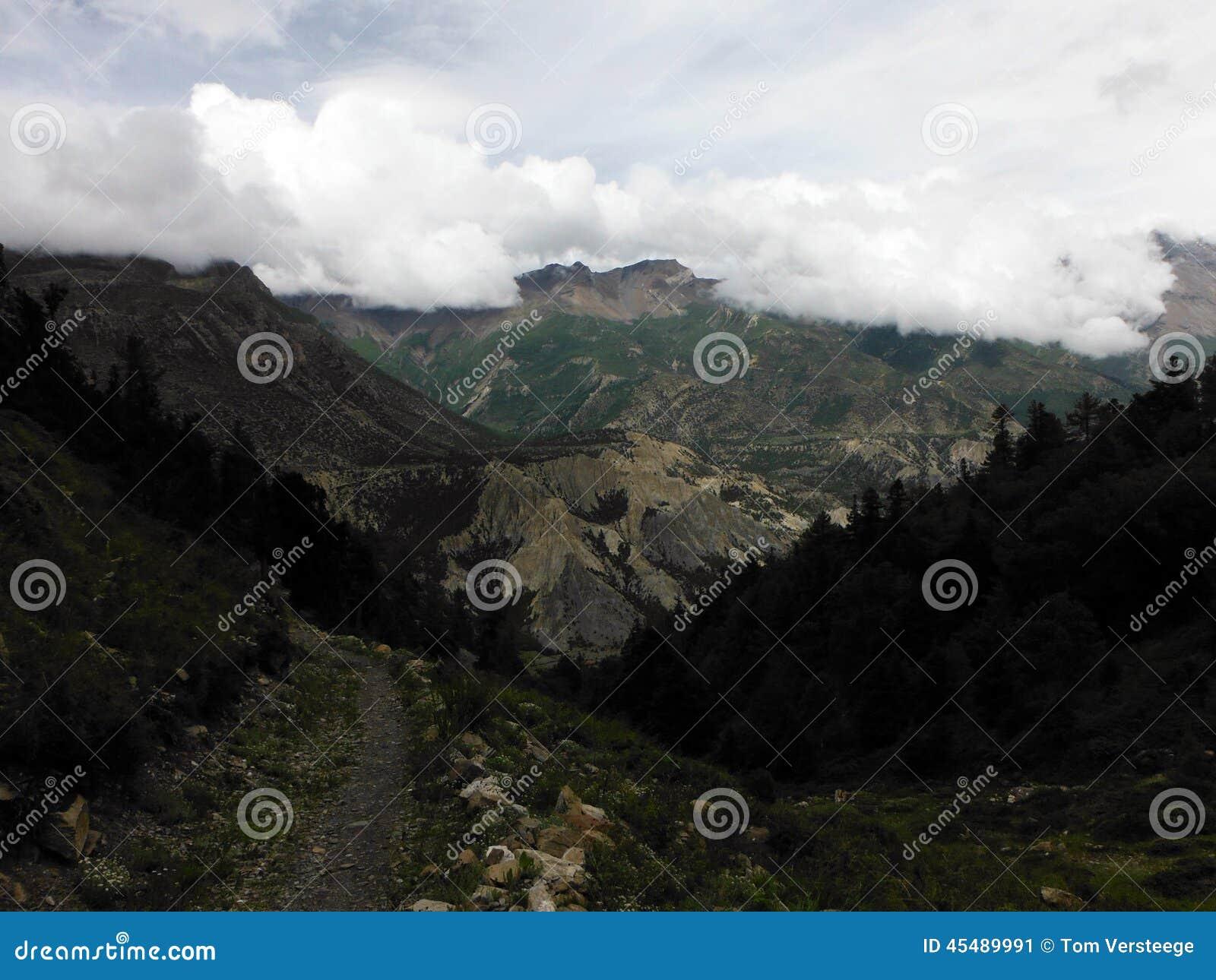 在季风期间,高喜马拉雅谷