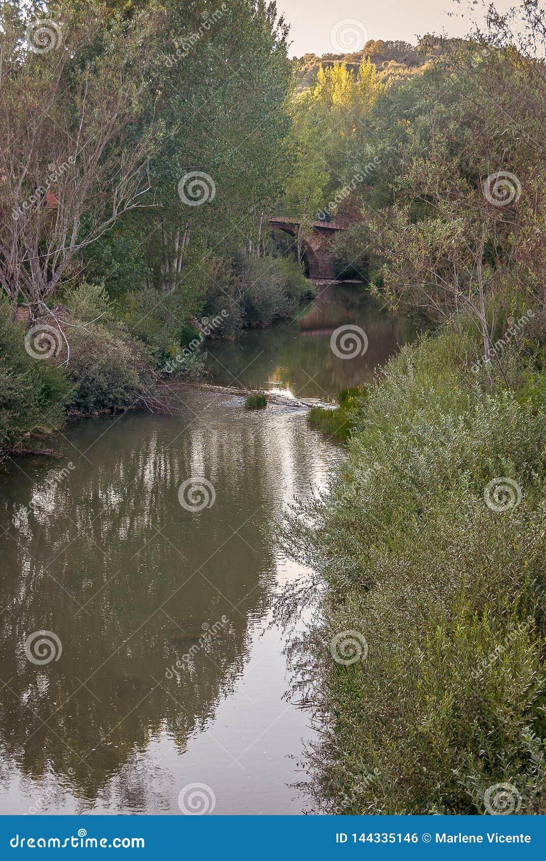 在它的途中的里约Pisuerga通过圣萨尔瓦多de Cantamuda 帕伦西亚