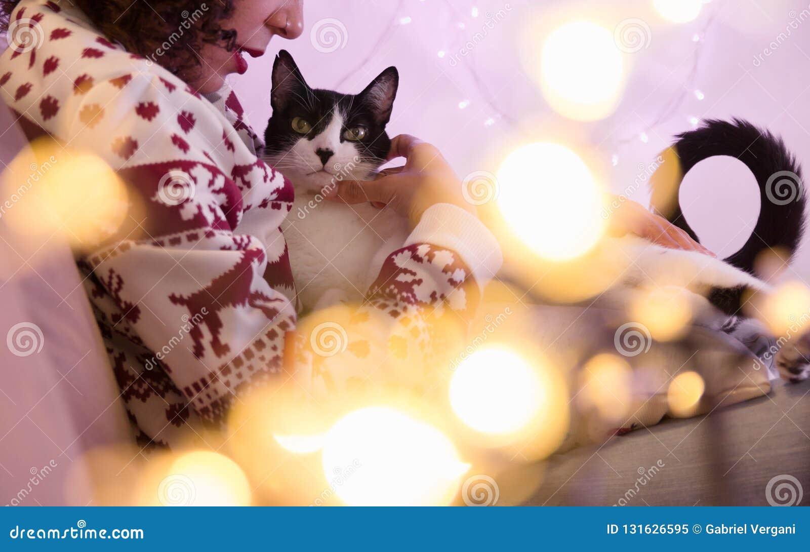 在家戴圣诞老人帽子的妇女和圣诞节毛线衣和可爱的宠物猫 与被弄脏的光的欢乐装饰