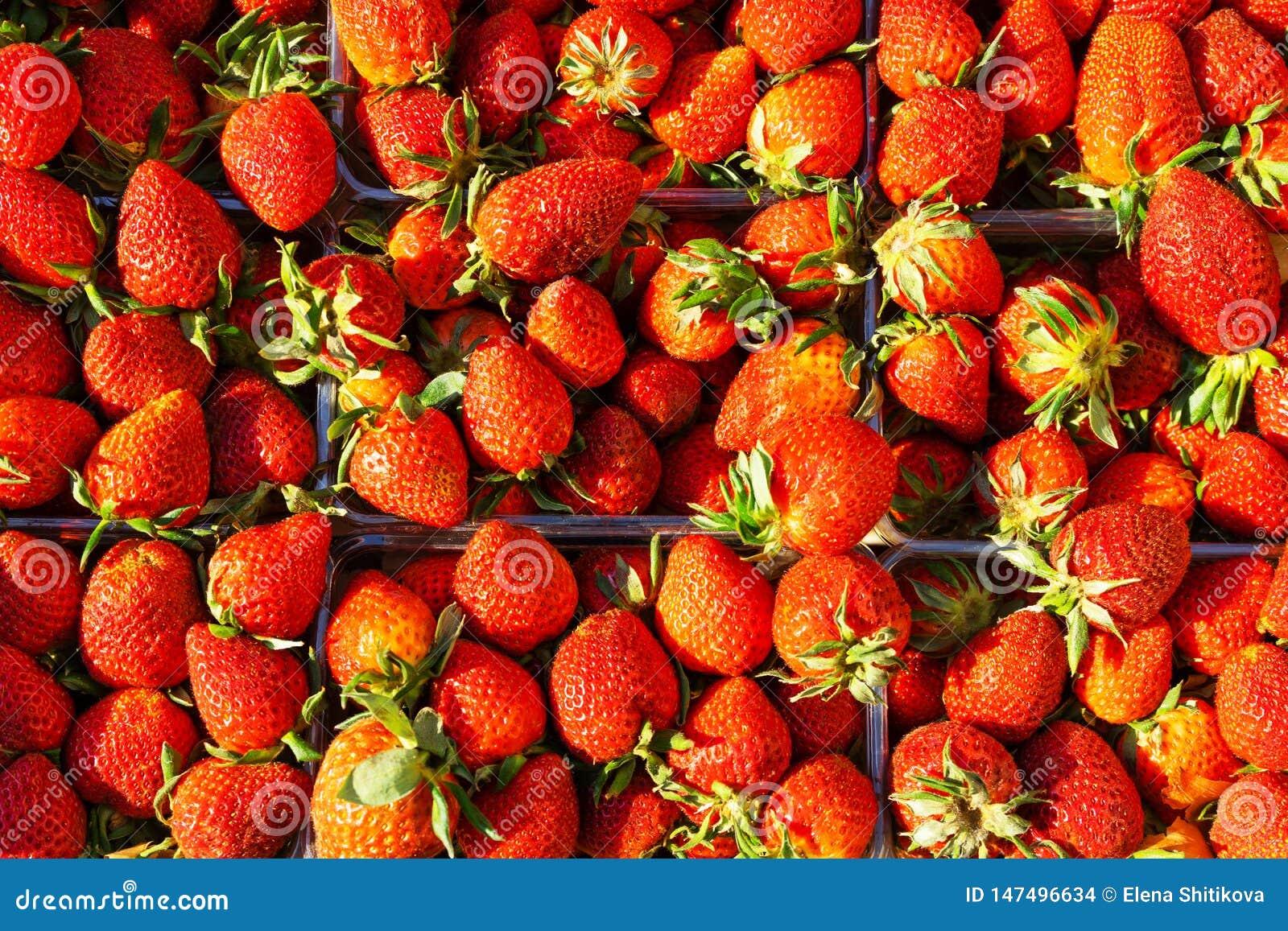 在容器的草莓 成熟莓果