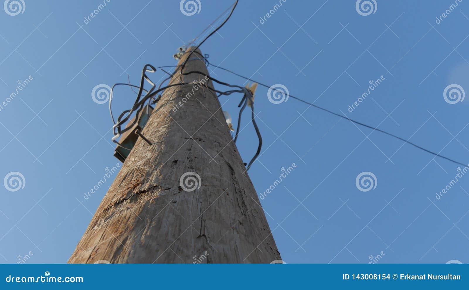 在导线附近的电线杆