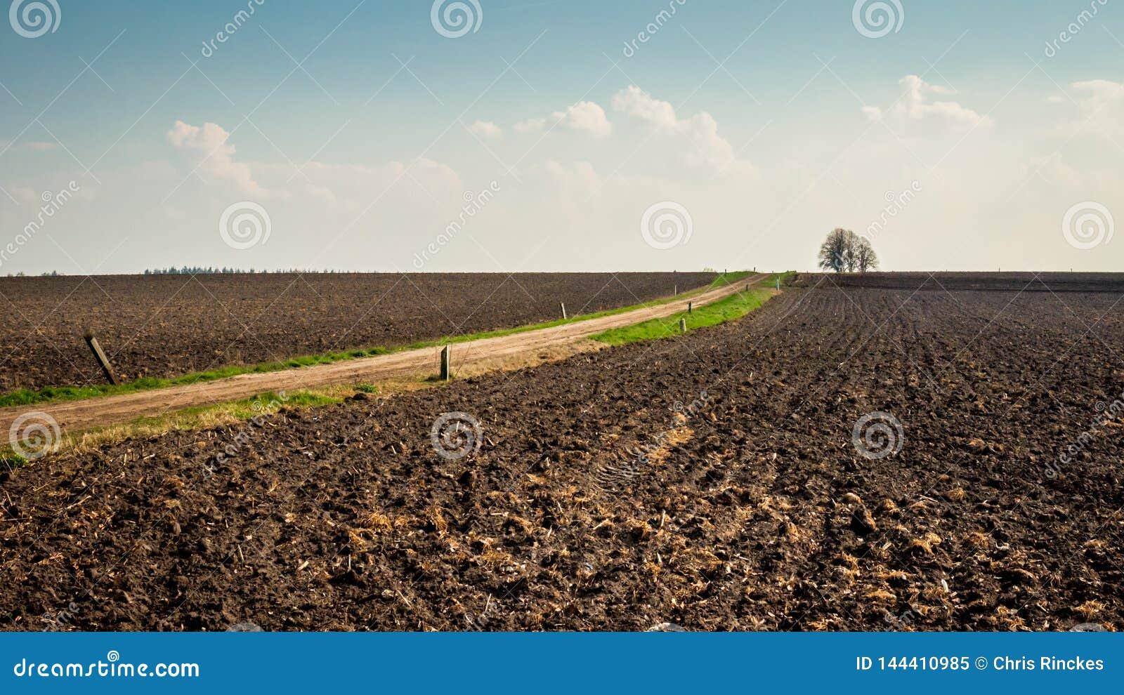 在小室火腿Twente,上艾瑟尔省附近的贫瘠荷兰风景在4月