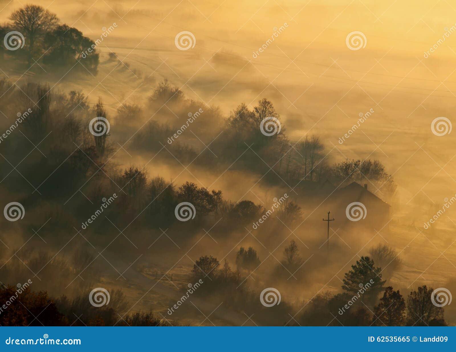 在小村庄的雾