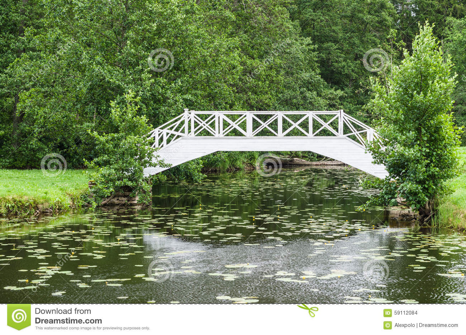 在小池塘的装饰白色木桥在公园