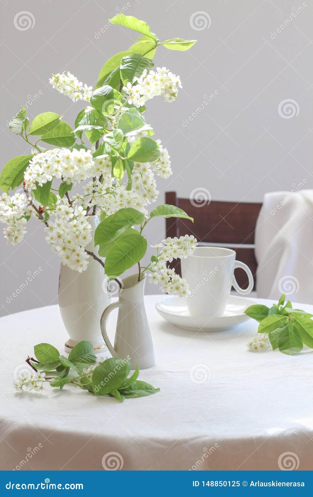 在小花瓶和一杯咖啡的白色鸟樱桃树绽放在一张白色桌上的