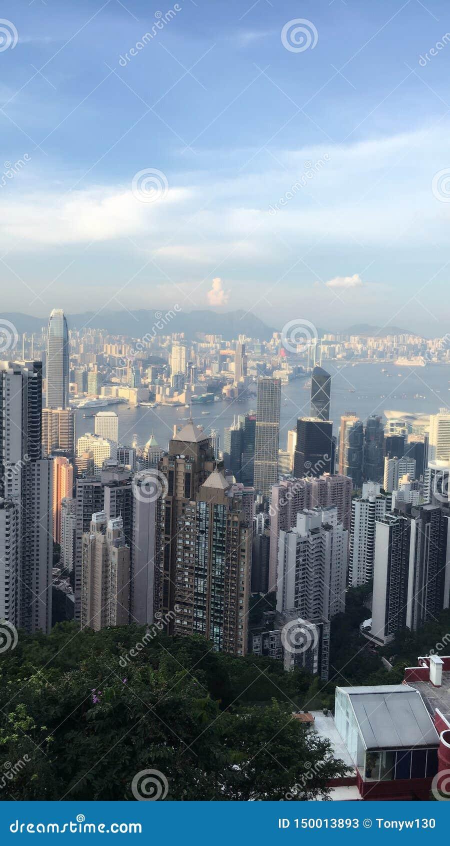 在山上面的鸟景色在HK