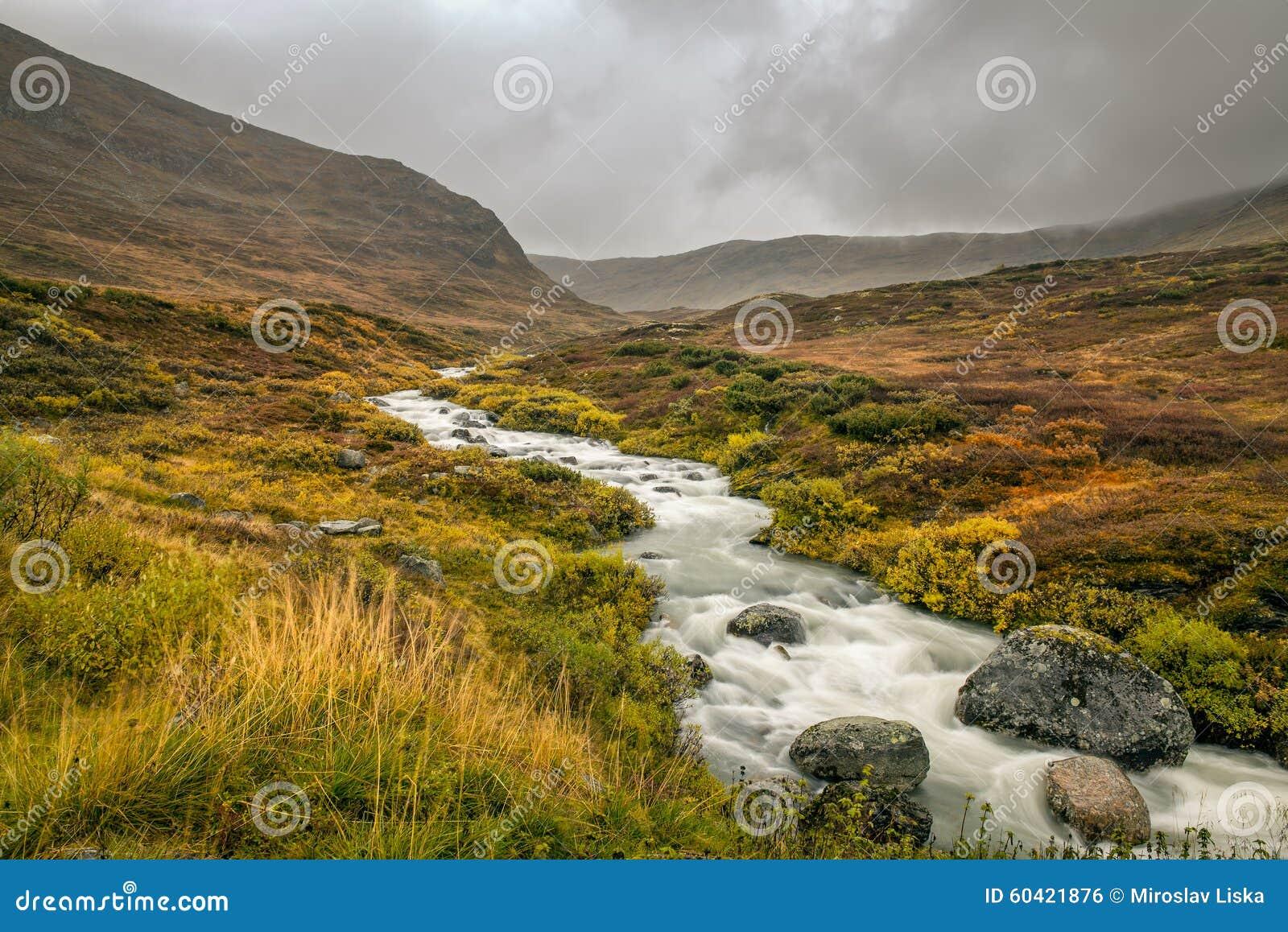 在山口的小河在Sognefjellet,挪威