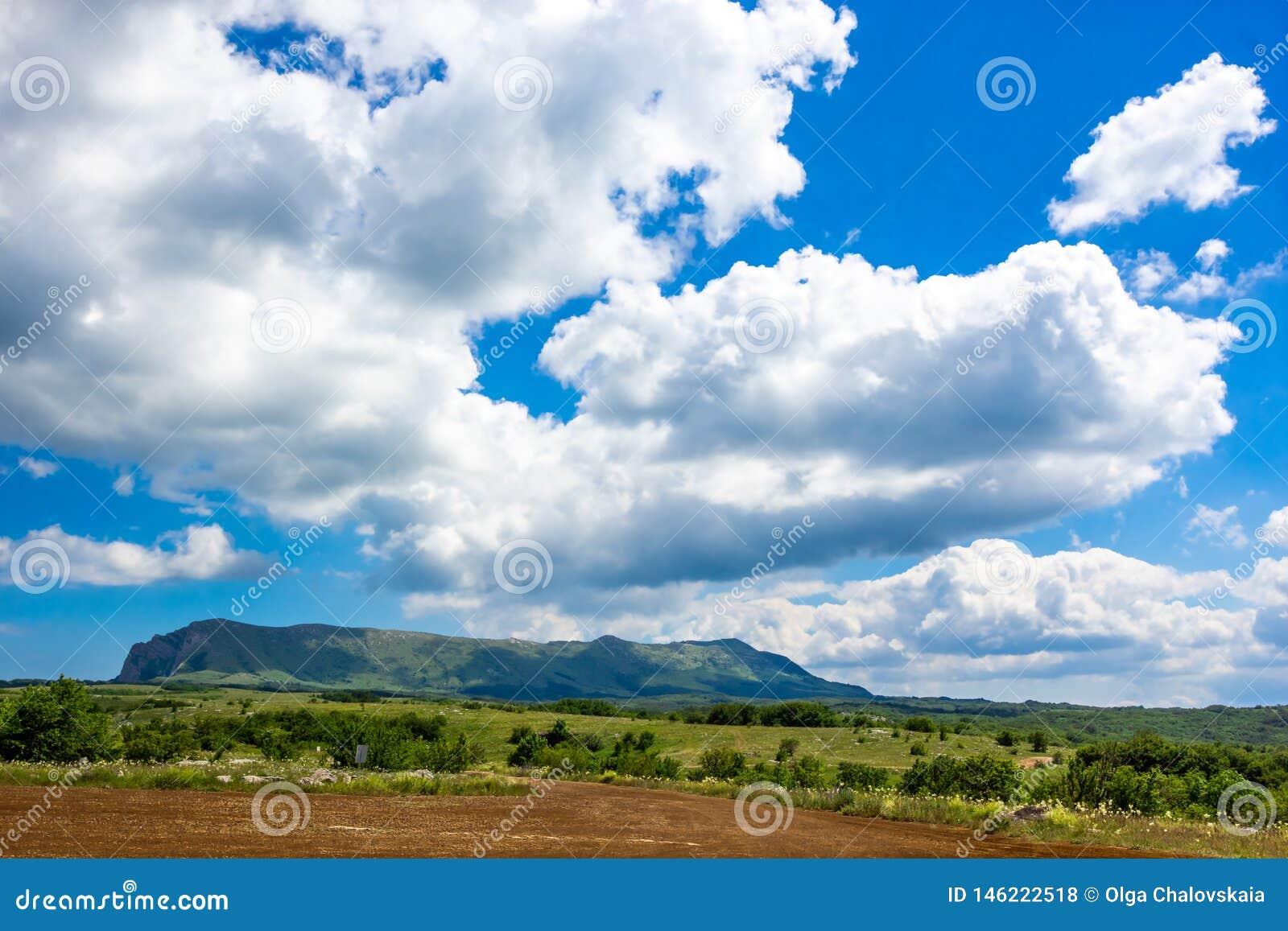 在山的五颜六色的夏天风景,在与白色云彩的一天空蔚蓝下