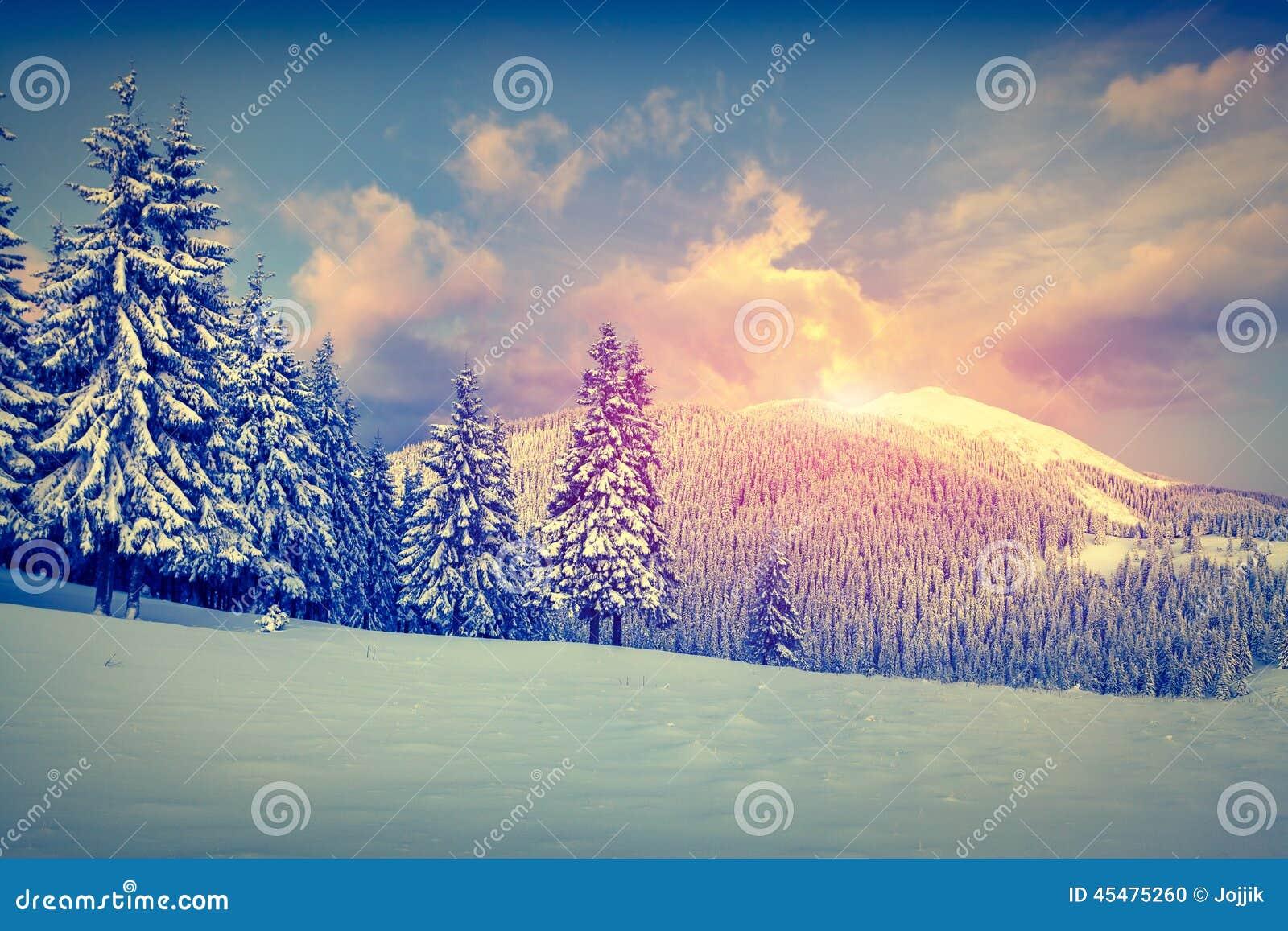 在山的美好的冬天日出
