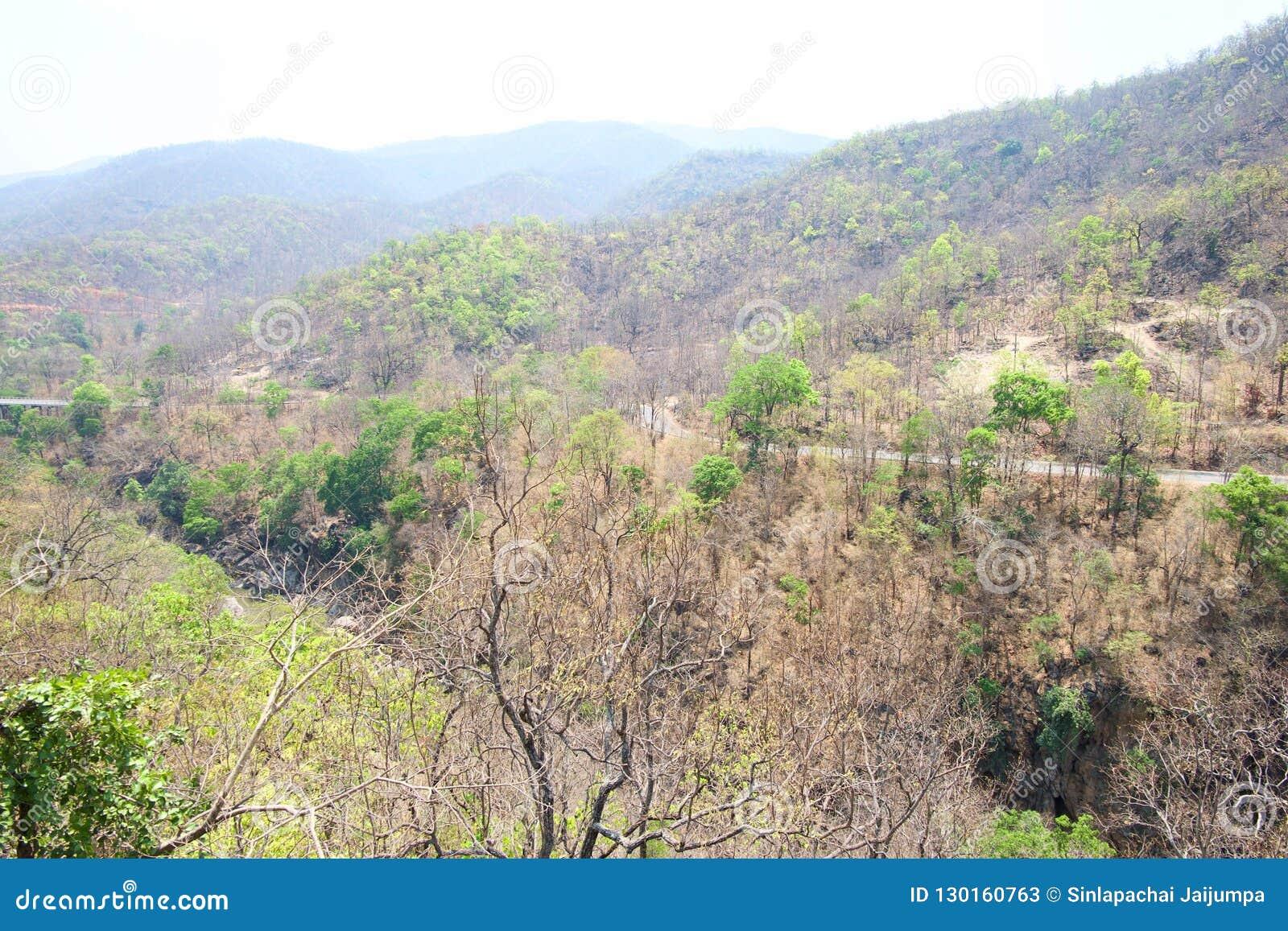在山的路和河在操作Luang国立公园的,热,清迈,泰国森林里 热天气和干旱