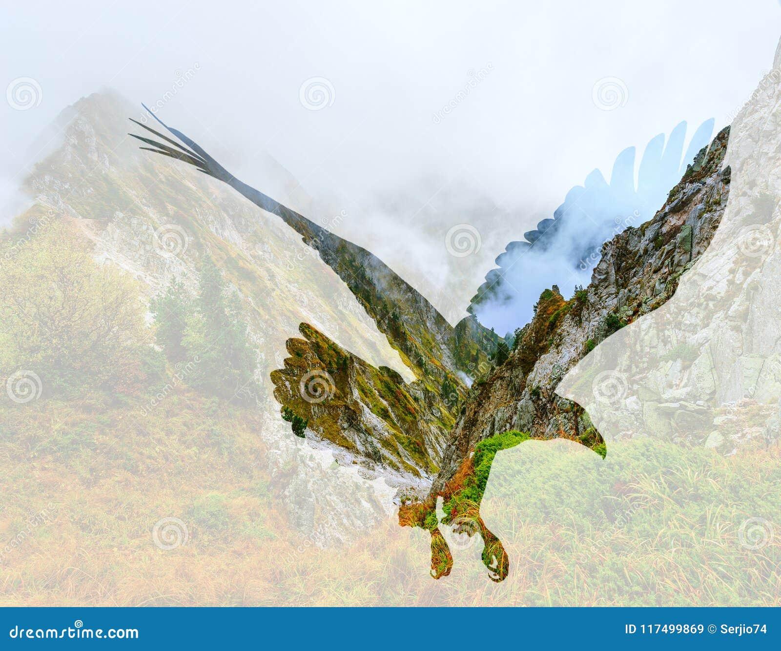 在山风景背景的白头鹰
