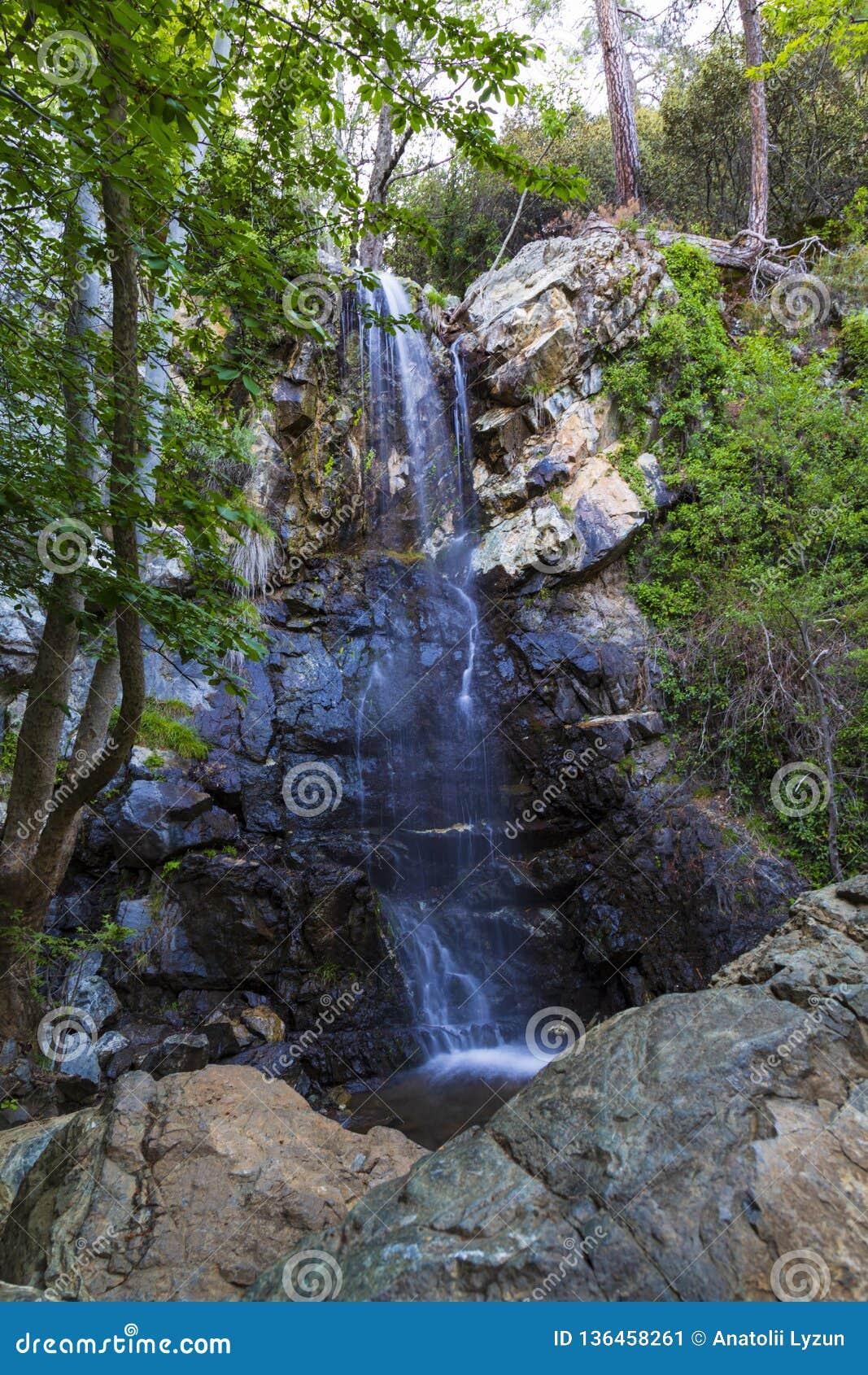 在岩石的小瀑布在森林里