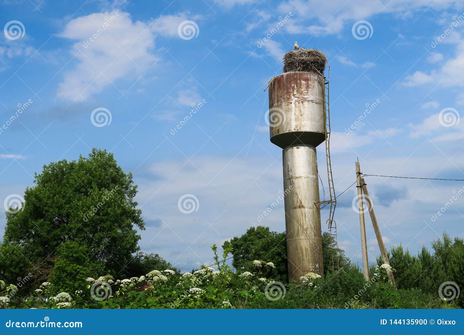 在巢的鹳在生锈的水塔
