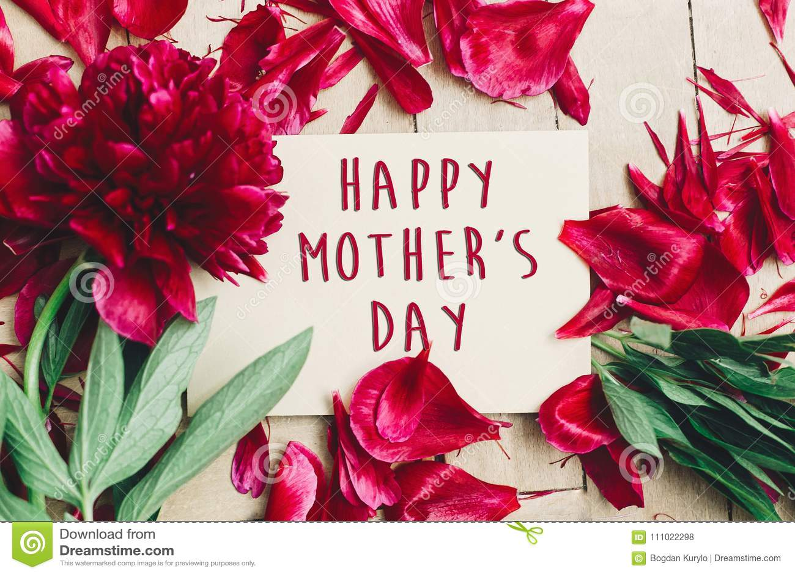 在工艺纸牌美好的红色p的愉快的母亲` s天文本标志