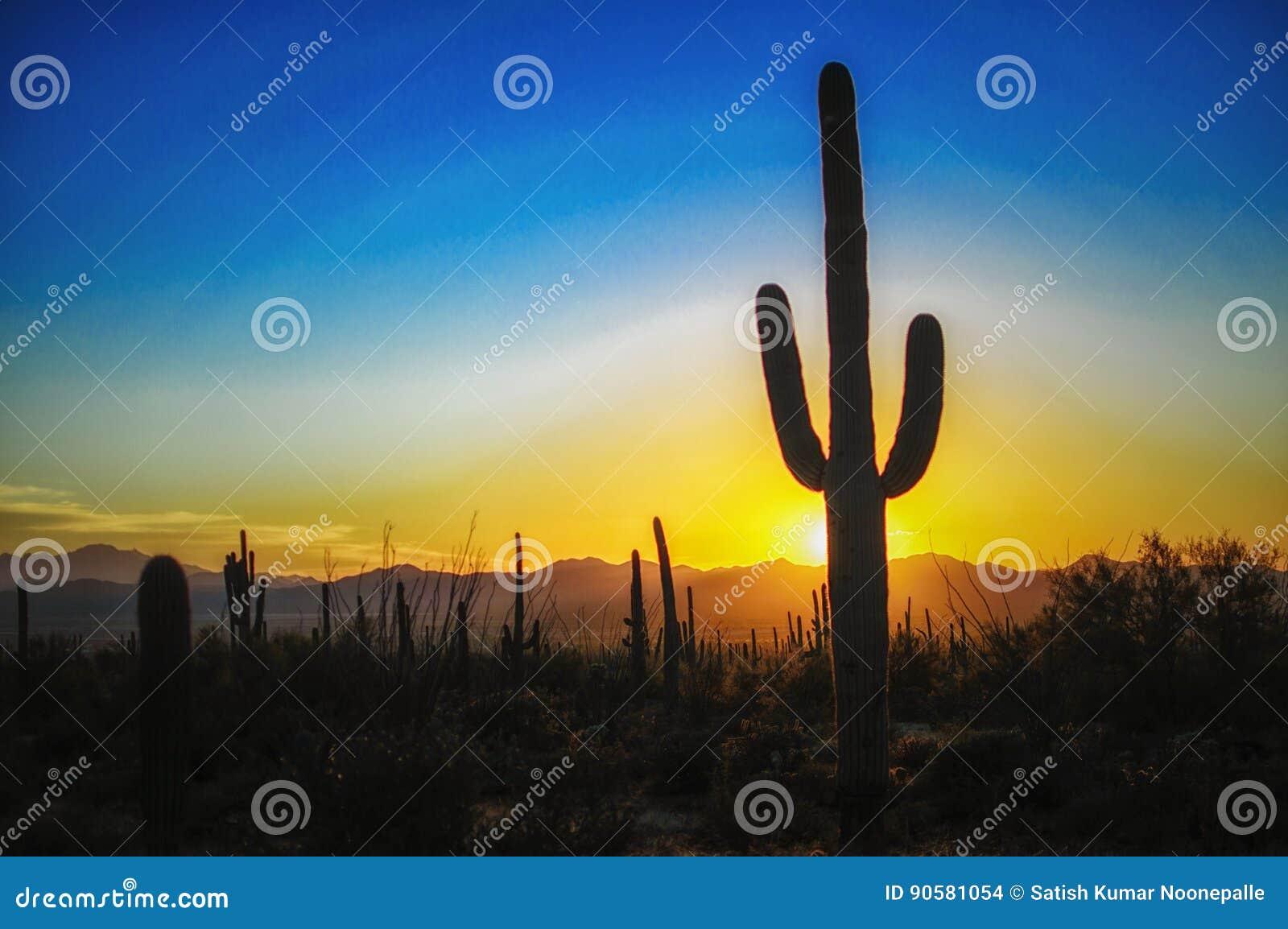 在巨人柱国家公园,图森AZ的日落